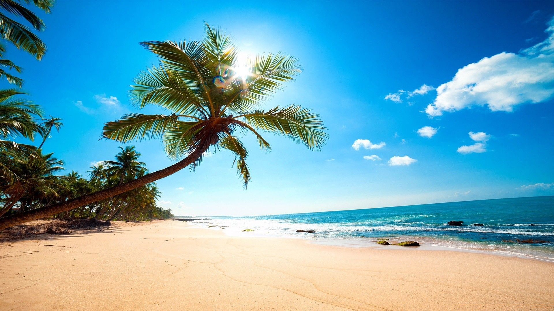 Caribbean Picture