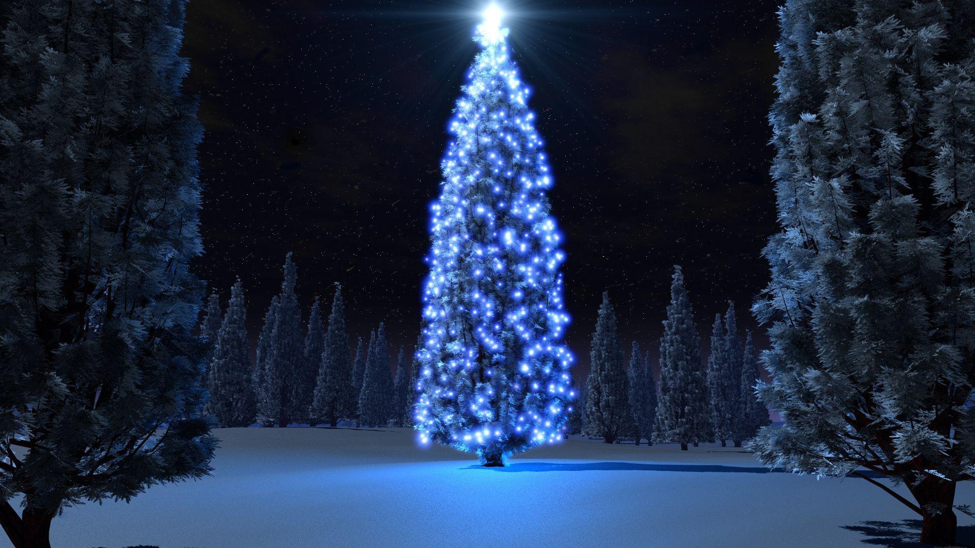 Christmas Tree full hd wallpaper for laptop
