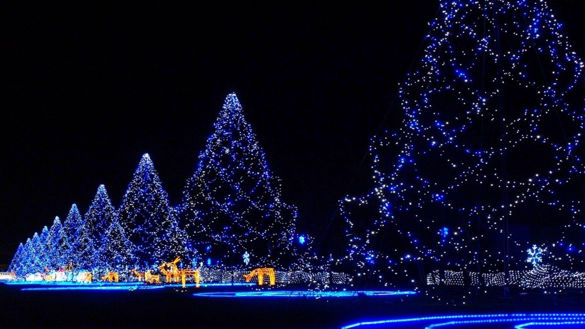 Christmas Tree hd wallpaper 1080