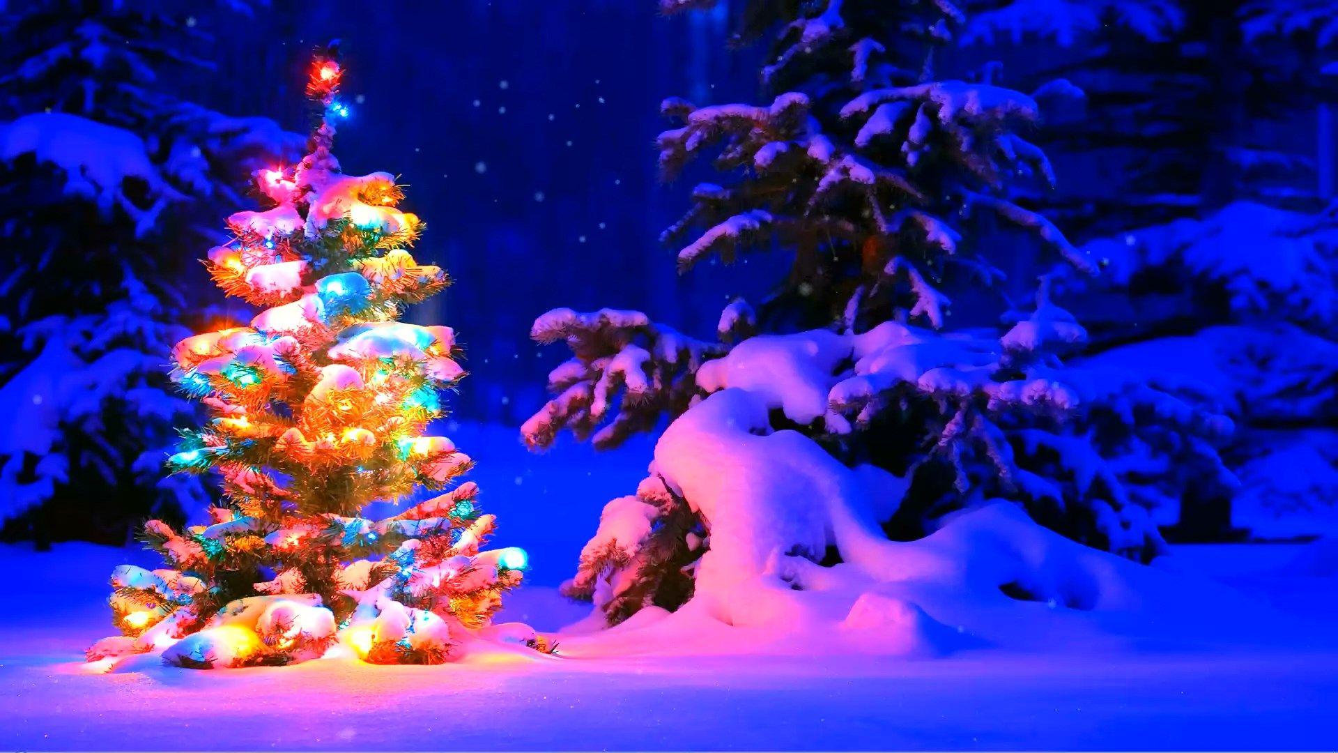 Christmas Tree Wallpaper Theme