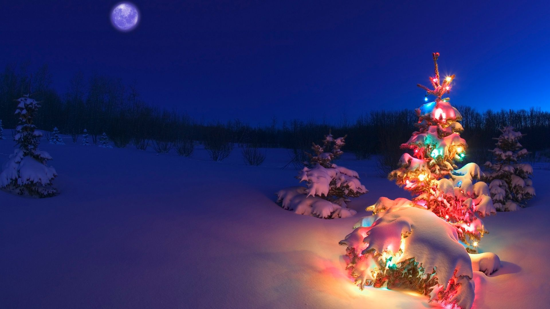 Christmas Tree best Wallpaper