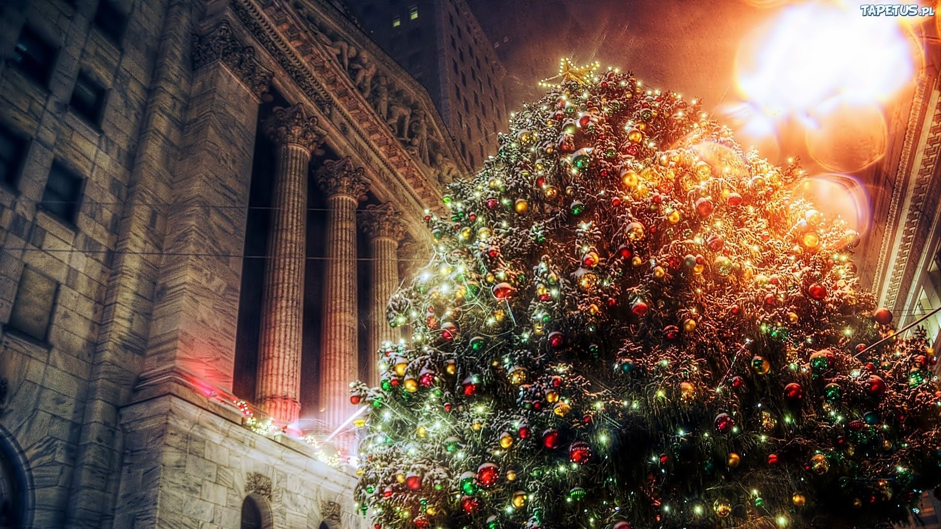 Christmas Tree Free Download Wallpaper