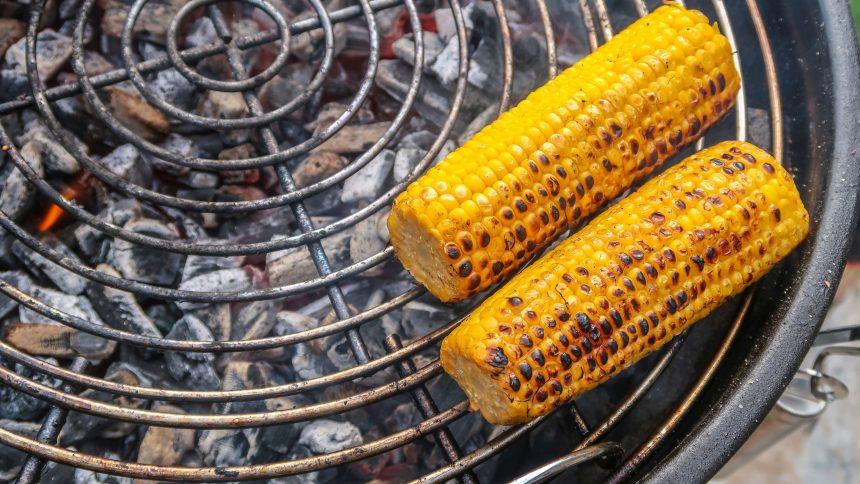 Corn desktop wallpaper download