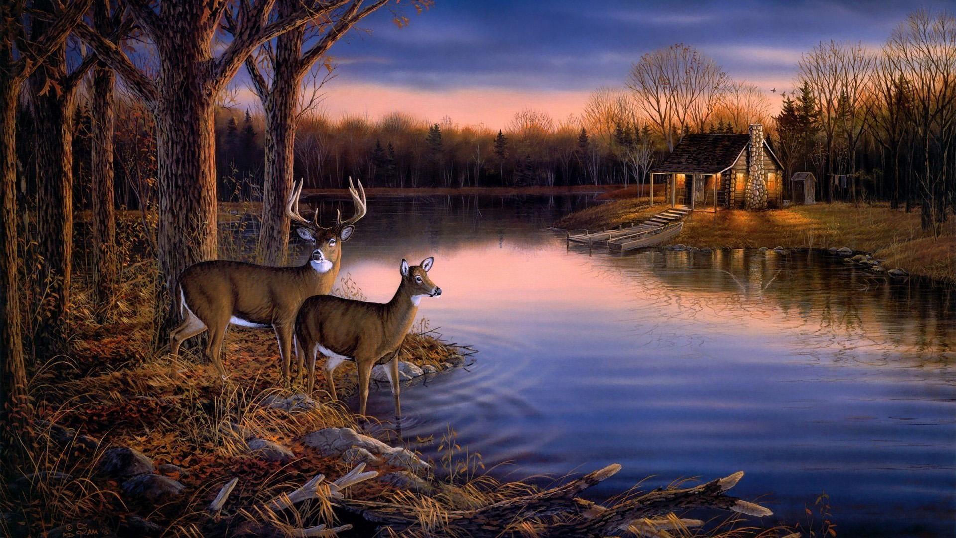 Deer Download Wallpaper
