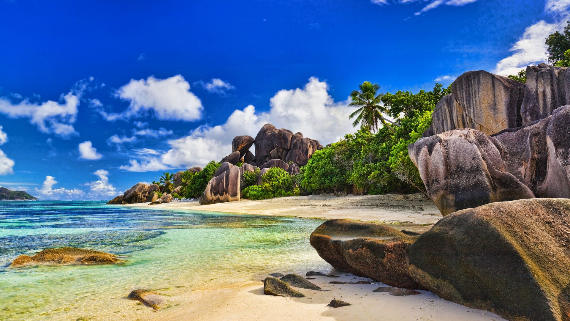 Exotic download free wallpapers for pc in hd