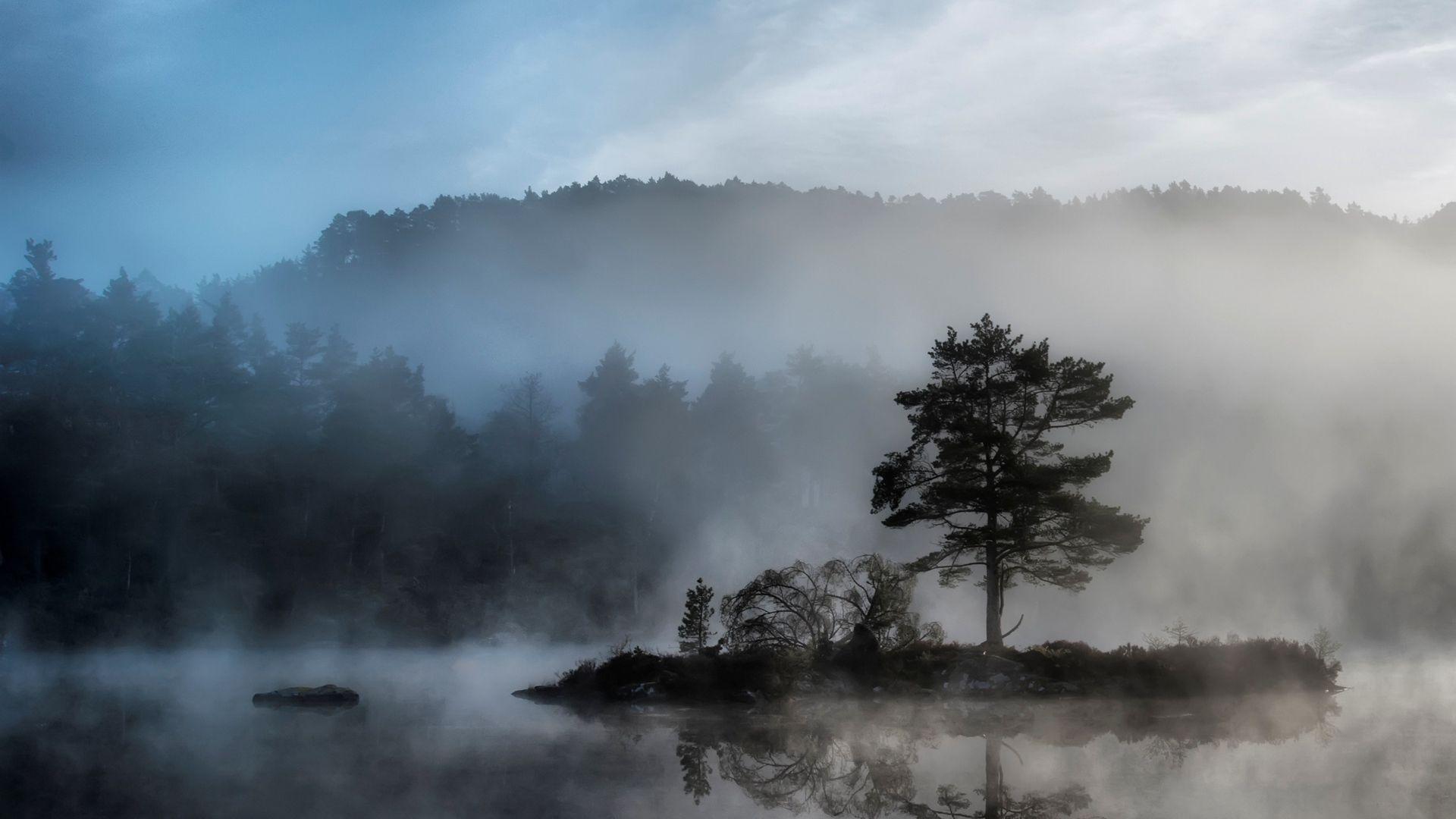 Fog Background Wallpaper