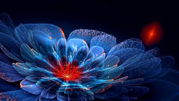 Fractal Flower Desktop Wallpaper