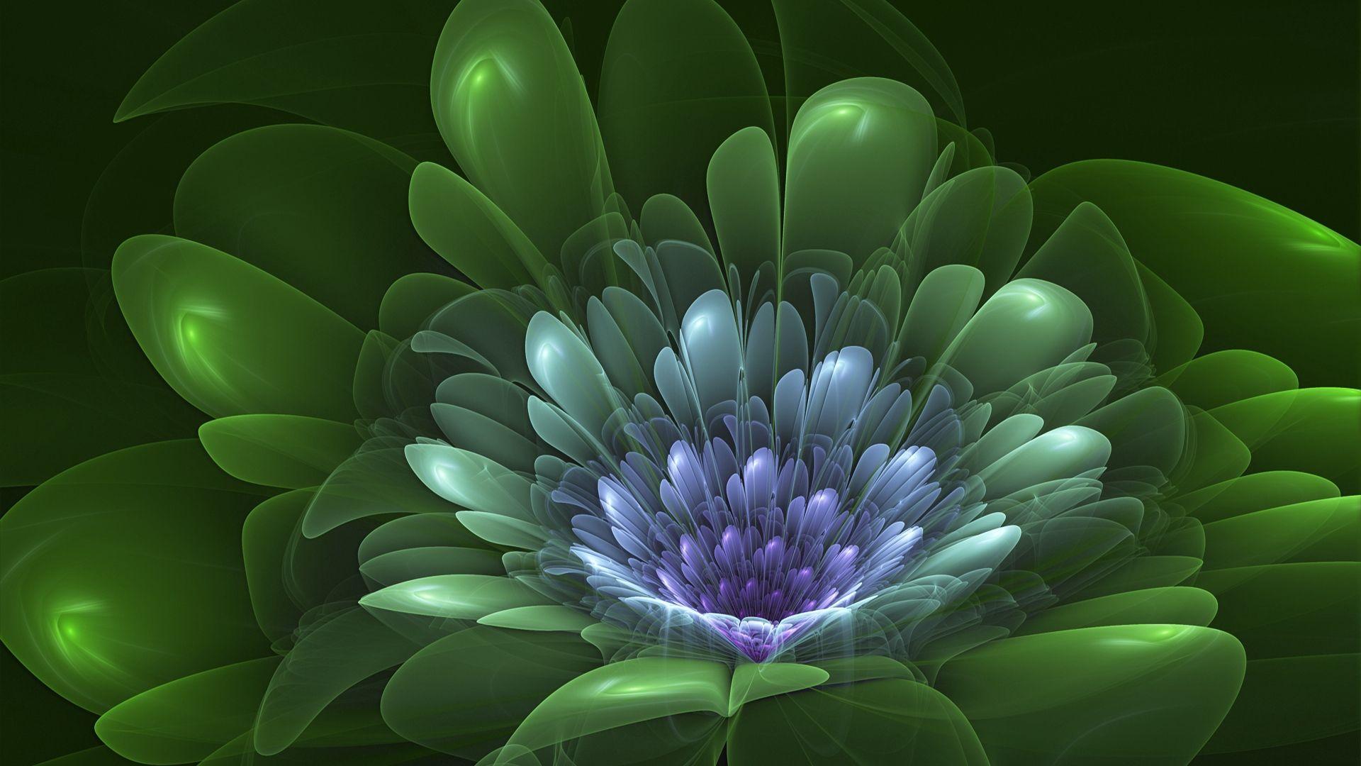 Fractal Flower wallpaper image hd