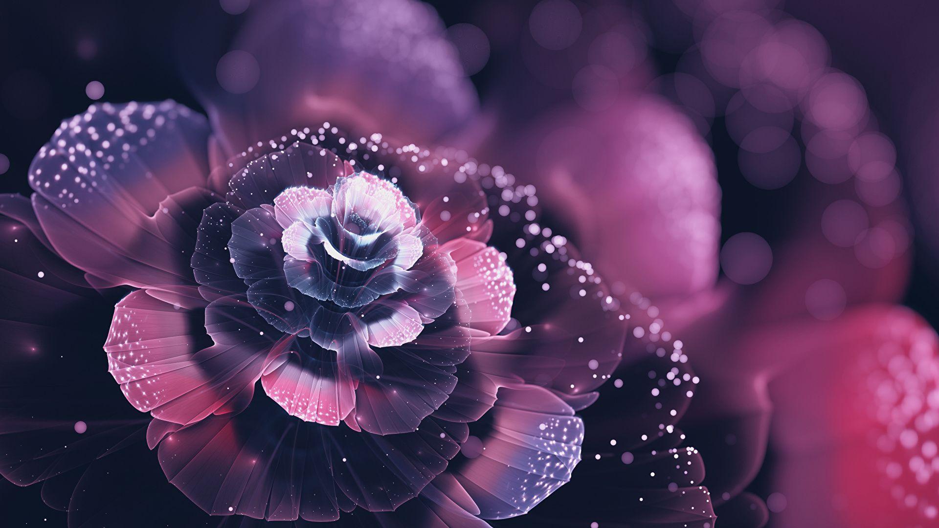 Fractal Flower Good Wallpaper