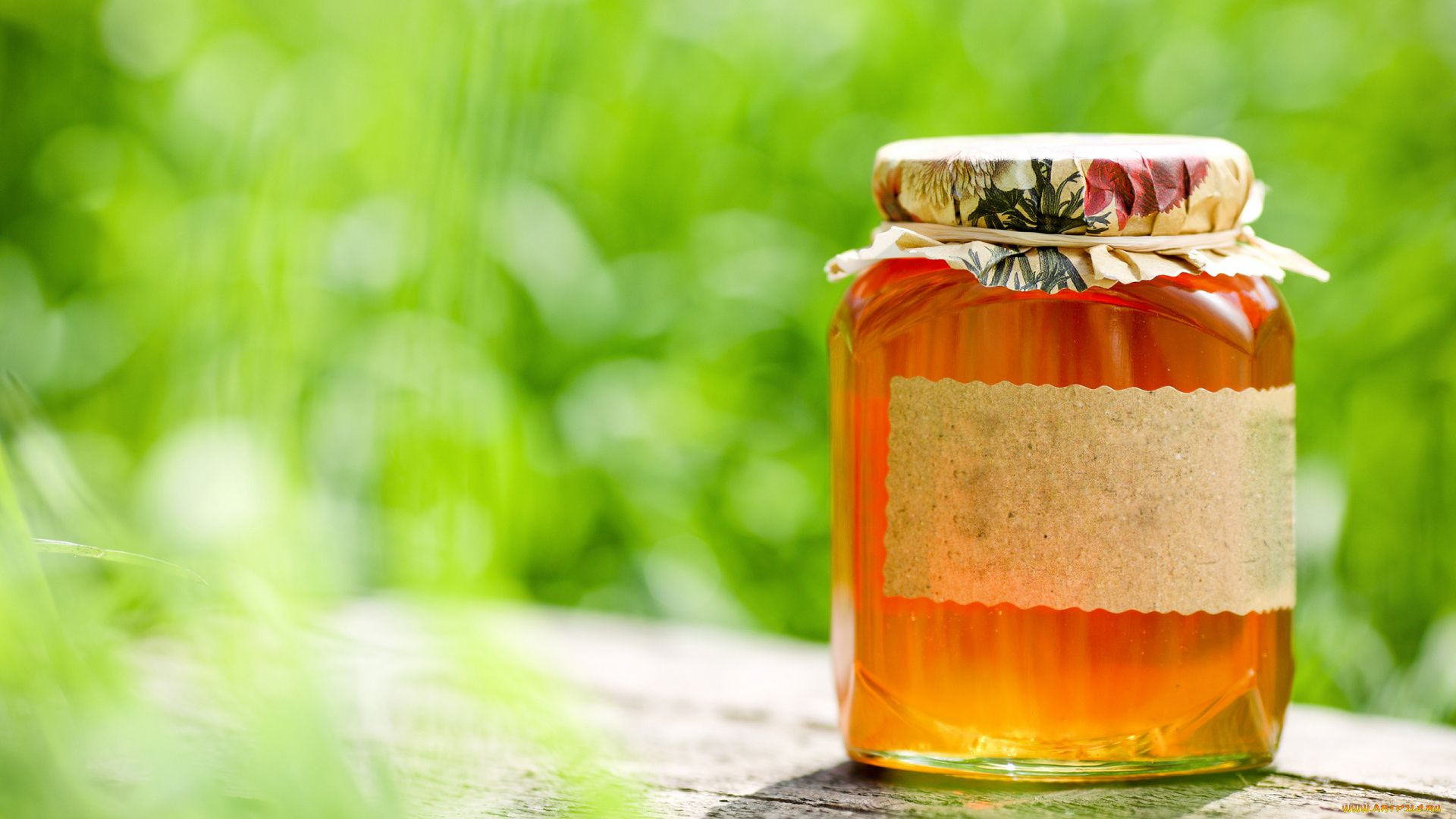 Honey download free wallpaper image search