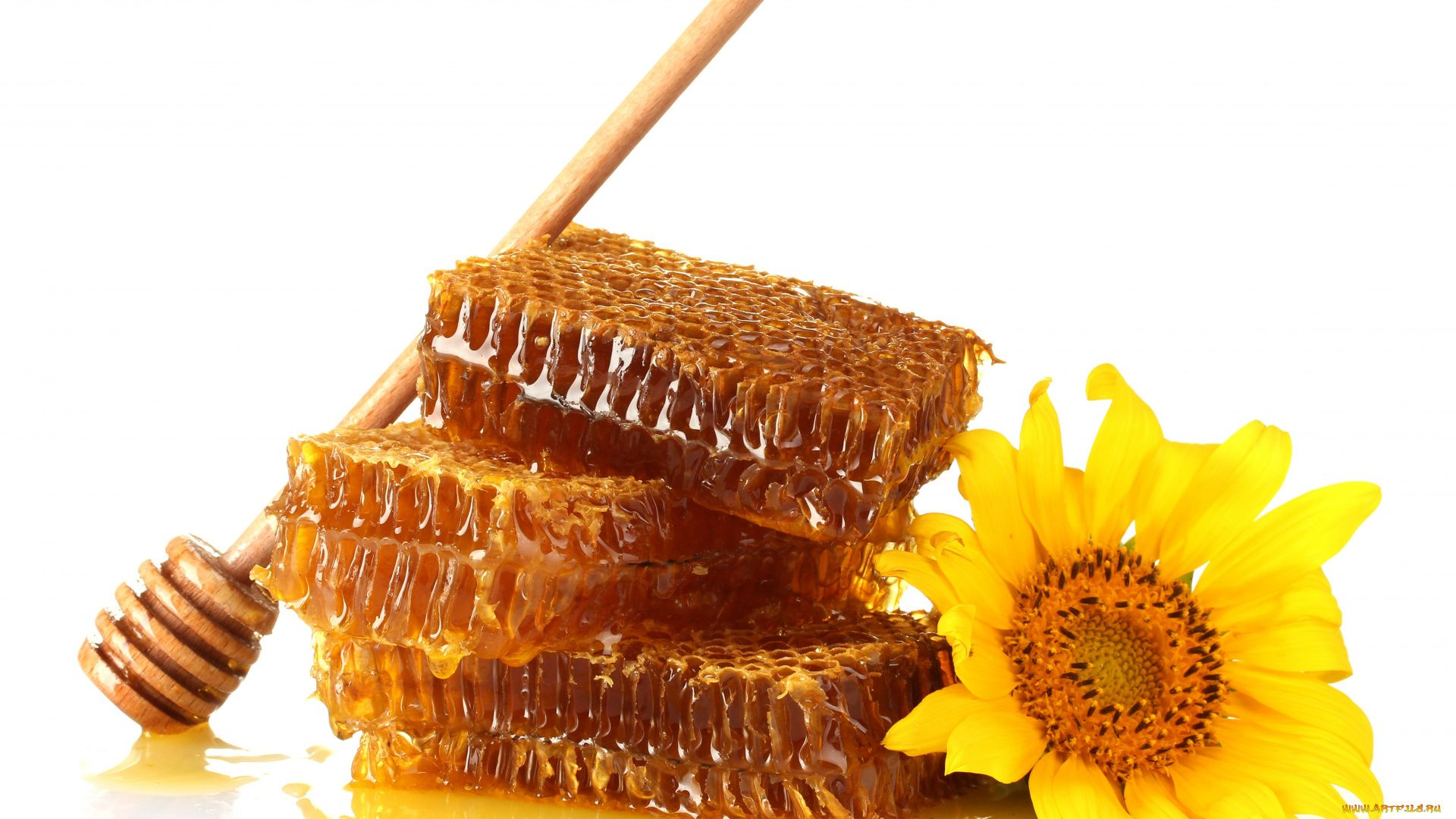 Honey Background Wallpaper