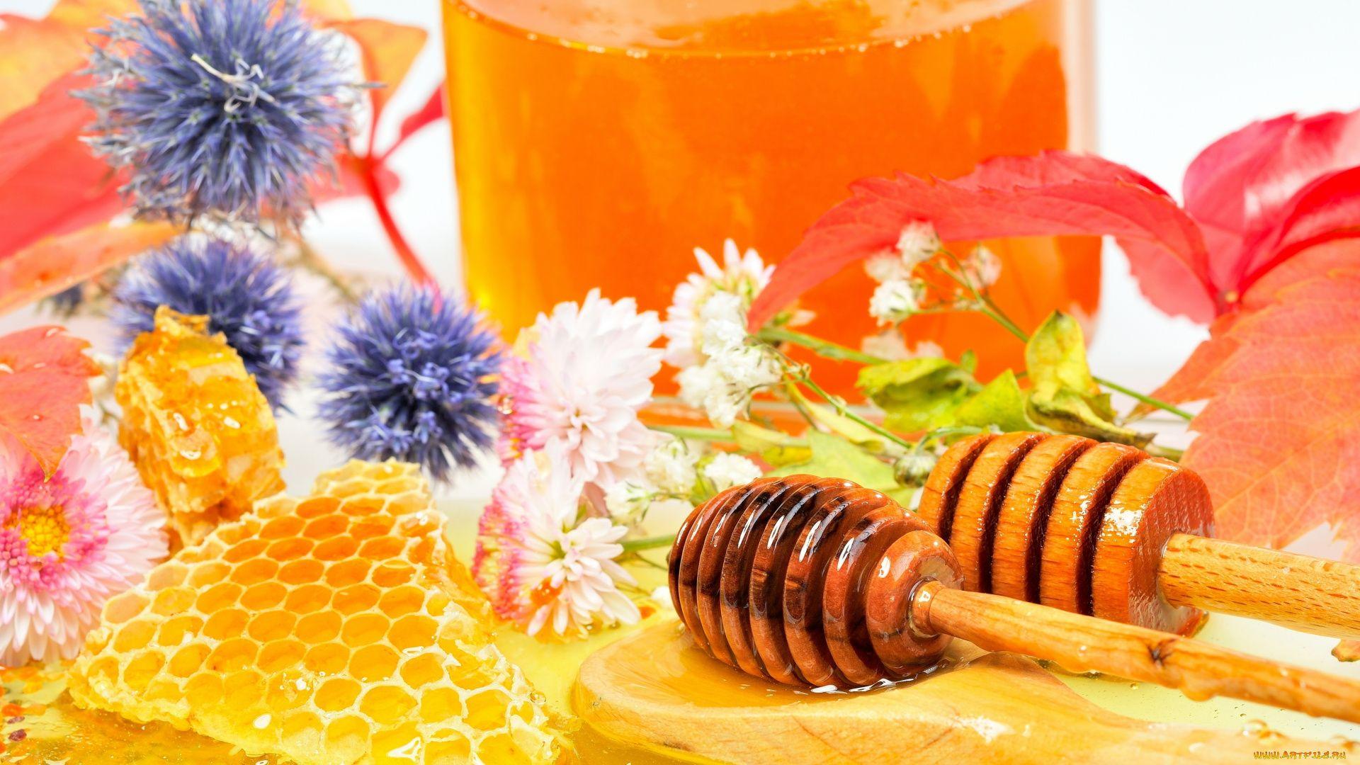 Honey screen wallpaper