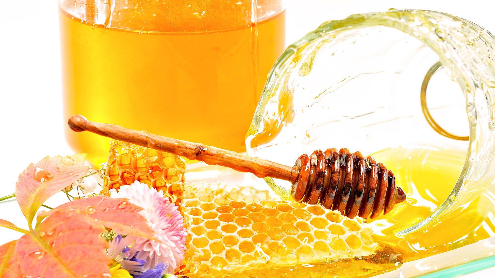 Honey hd wallpaper for laptop