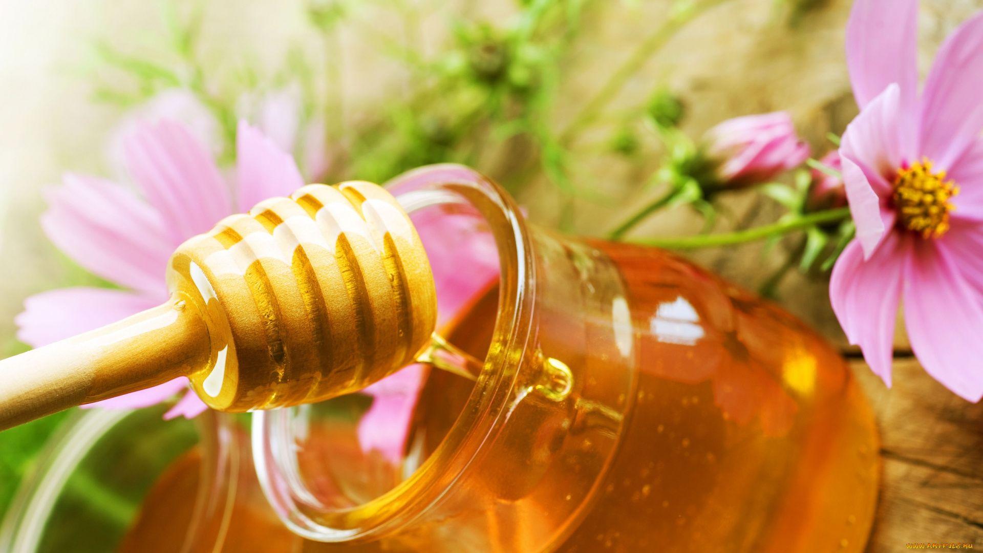Honey Cool HD Wallpaper