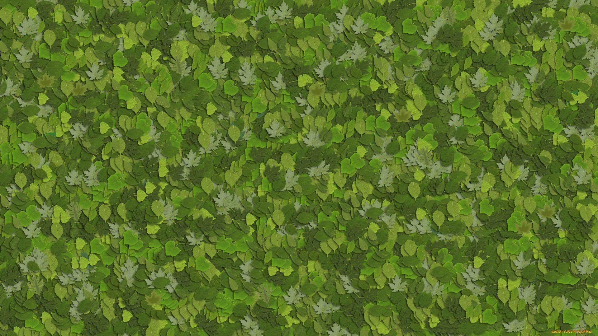 Leaf Pattern full hd wallpaper for laptop
