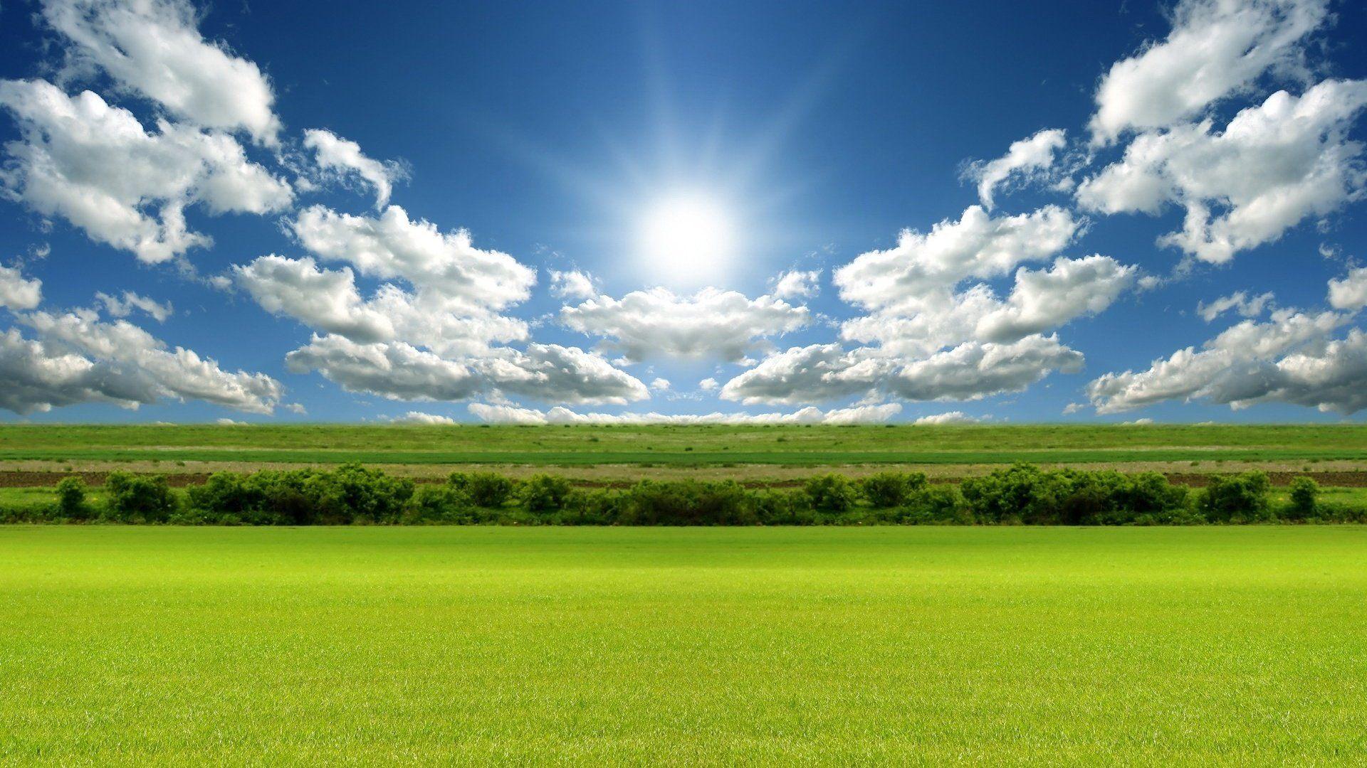 Meadow free download wallpaper