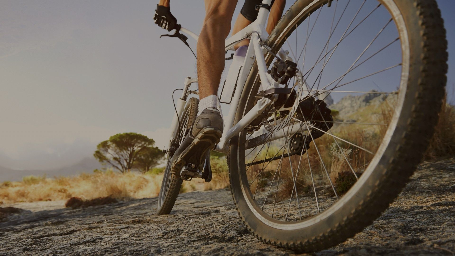 Mountain Bike Wallpaper and Background