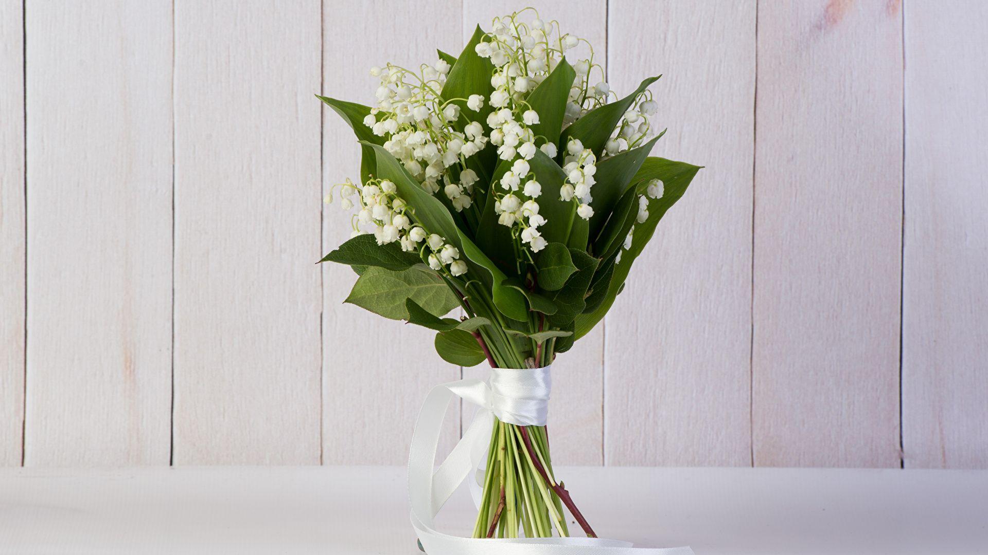 Muguet Flower Pic