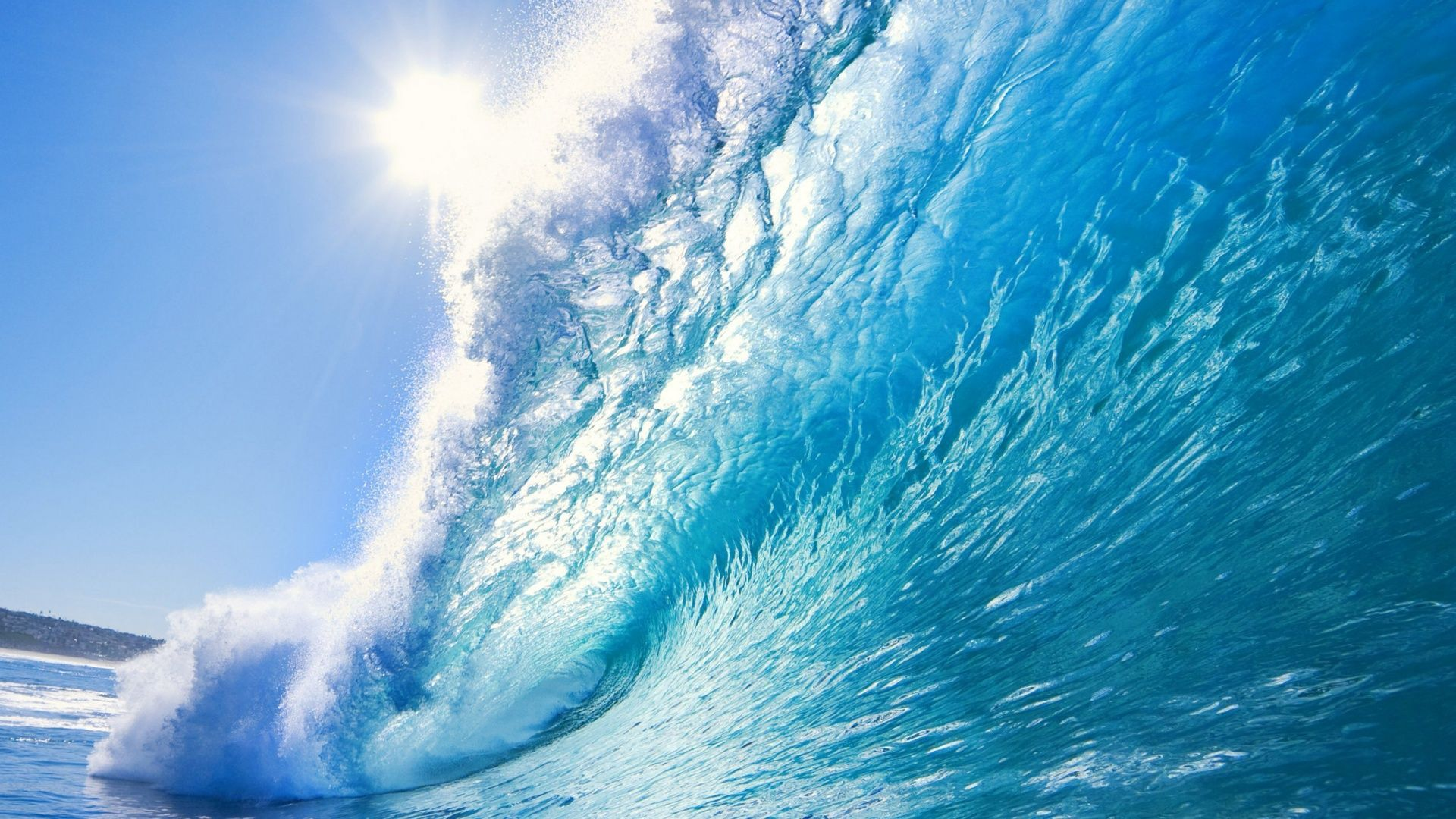 Ocean Themed Wallpaper
