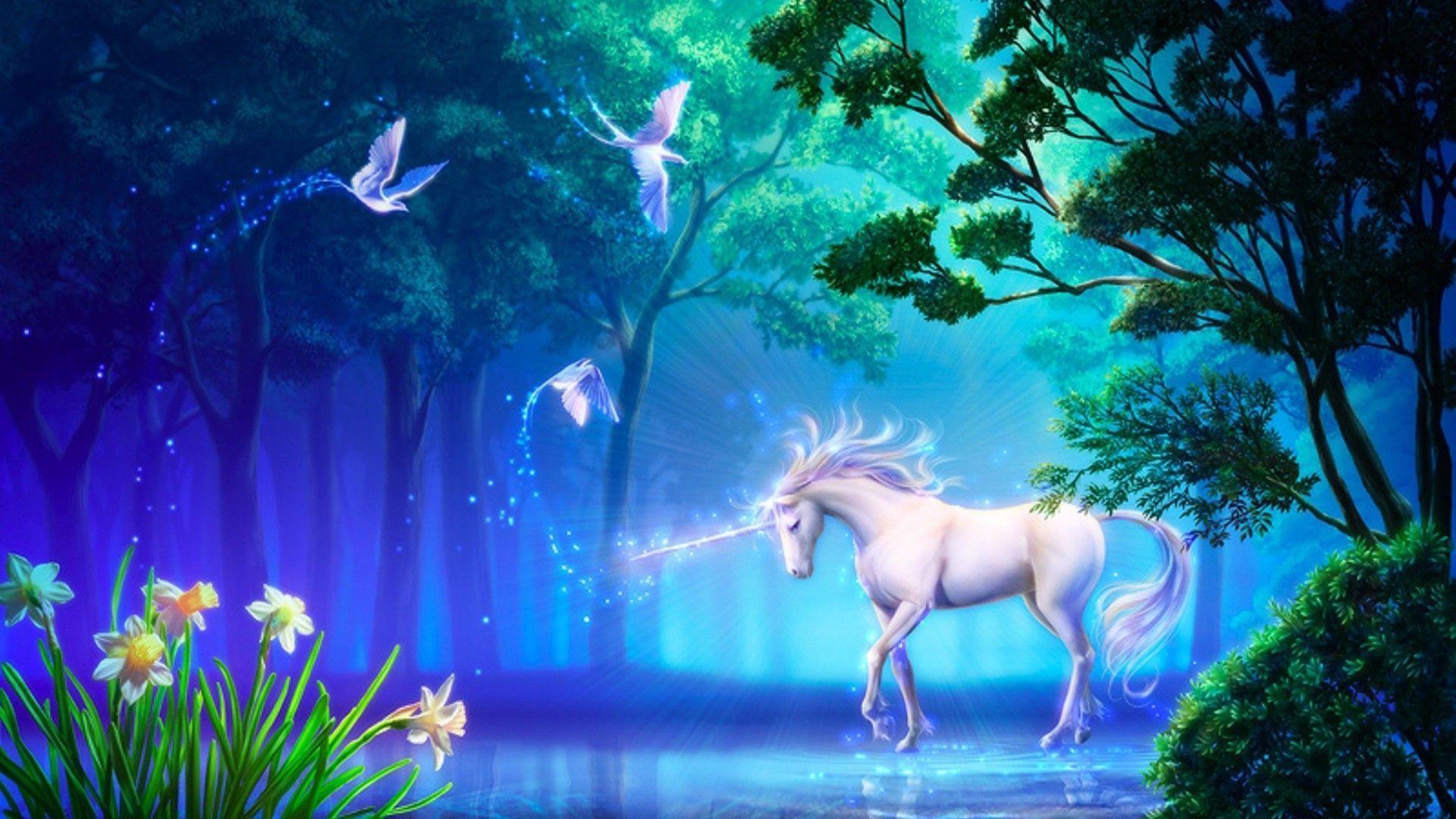 Unicorn High Quality
