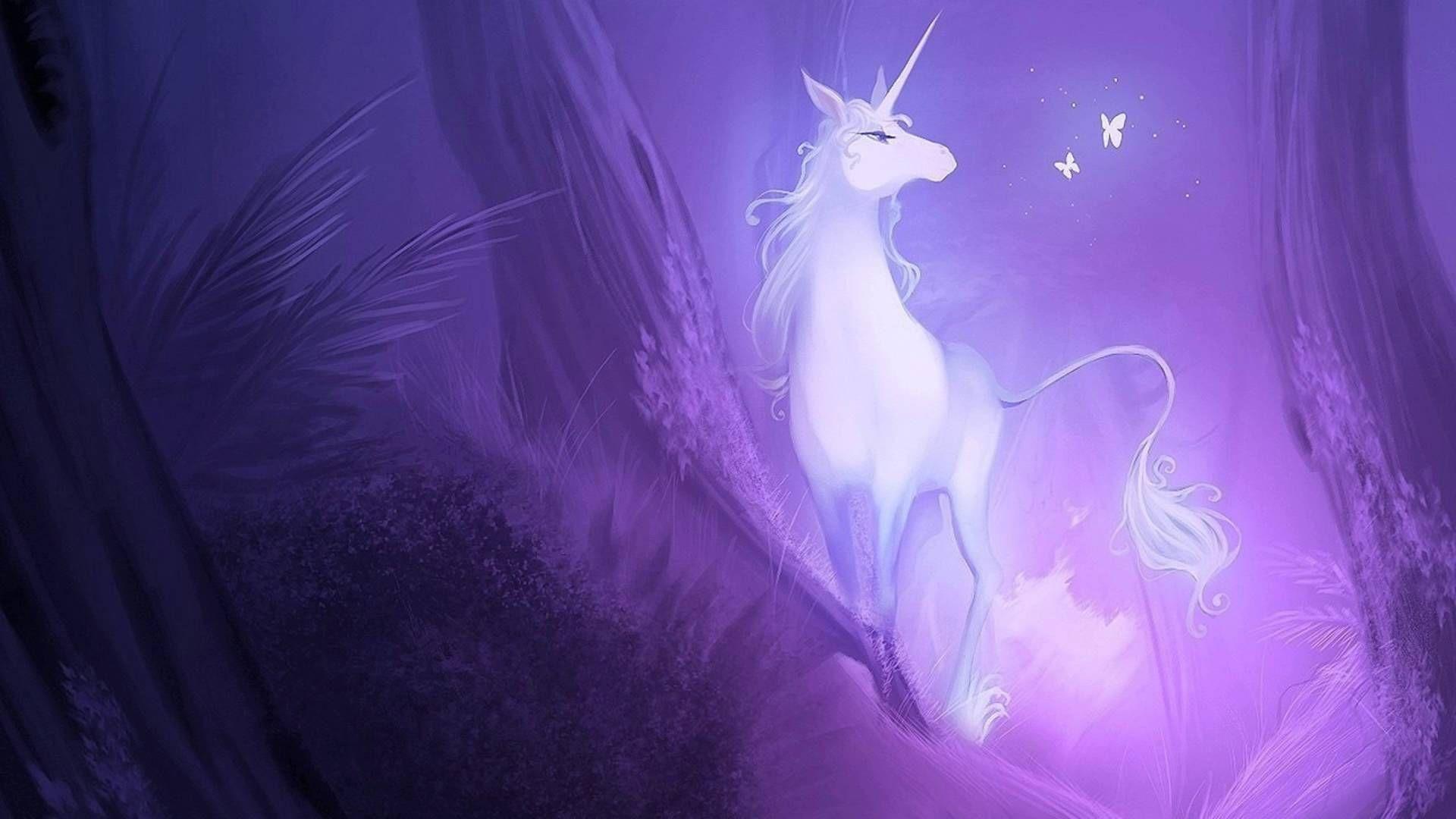 Unicorn full screen hd wallpaper