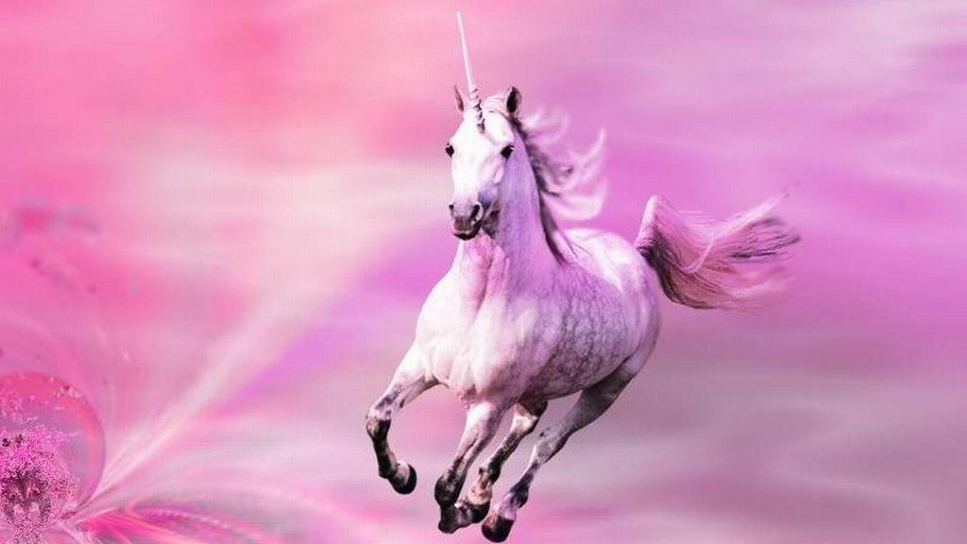 Unicorn Desktop Wallpaper