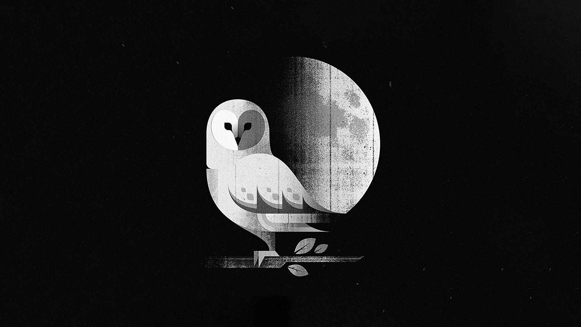 White Minimalism Wallpaper Picture