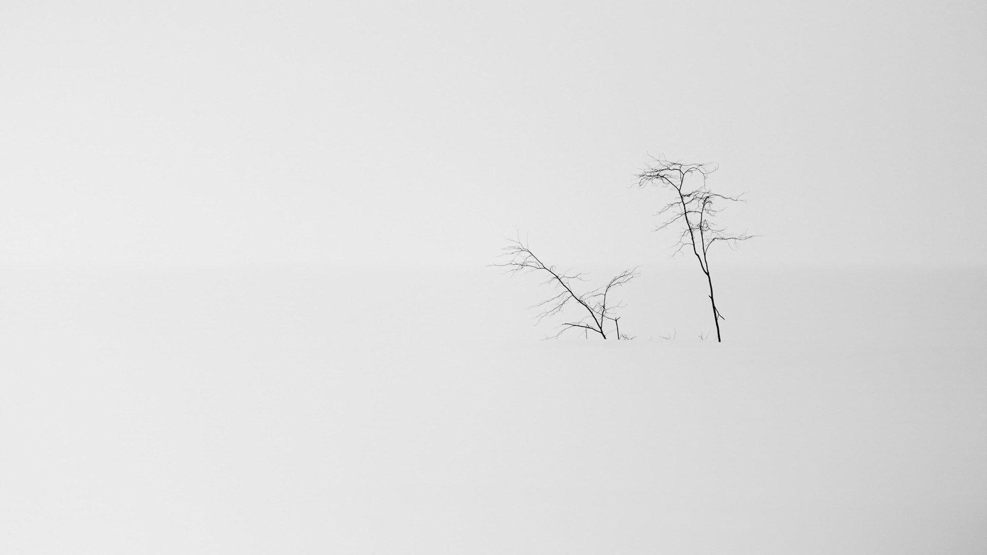 White Minimalism free download wallpaper