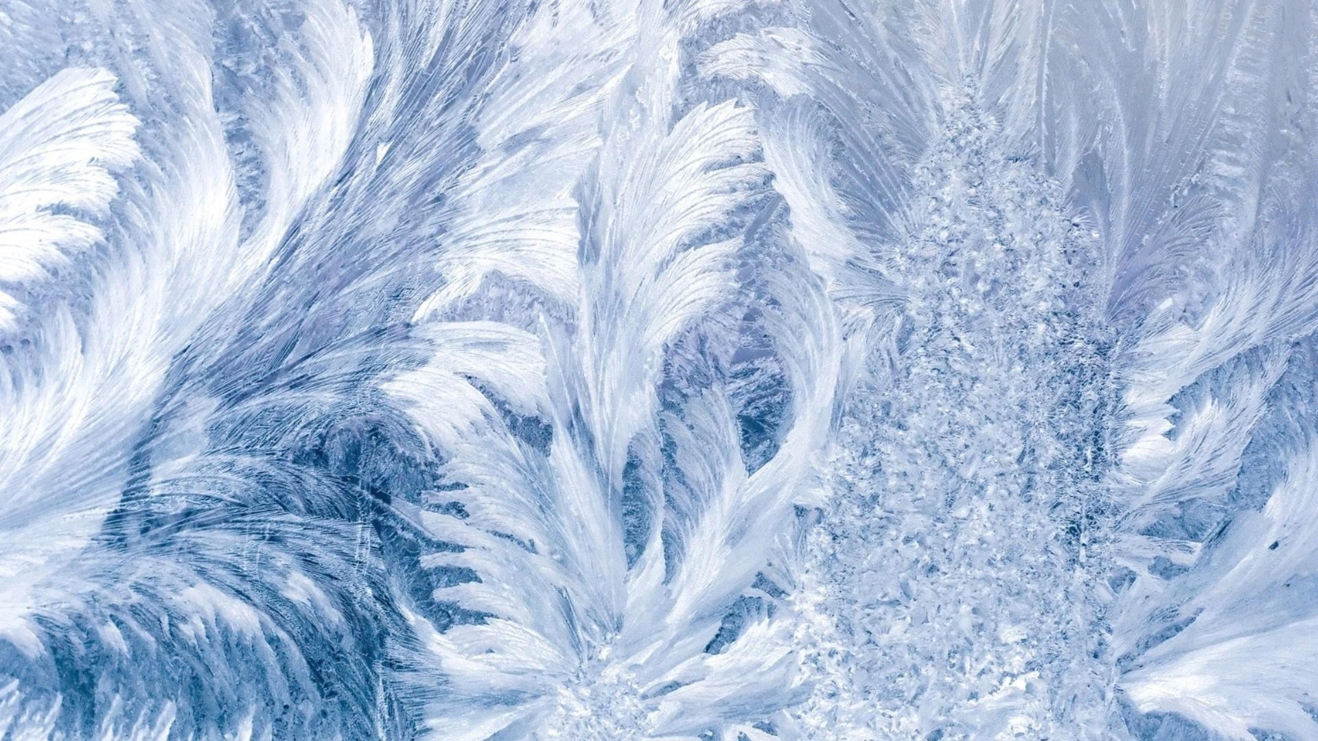 Winter Patterns On The Window pc wallpaper
