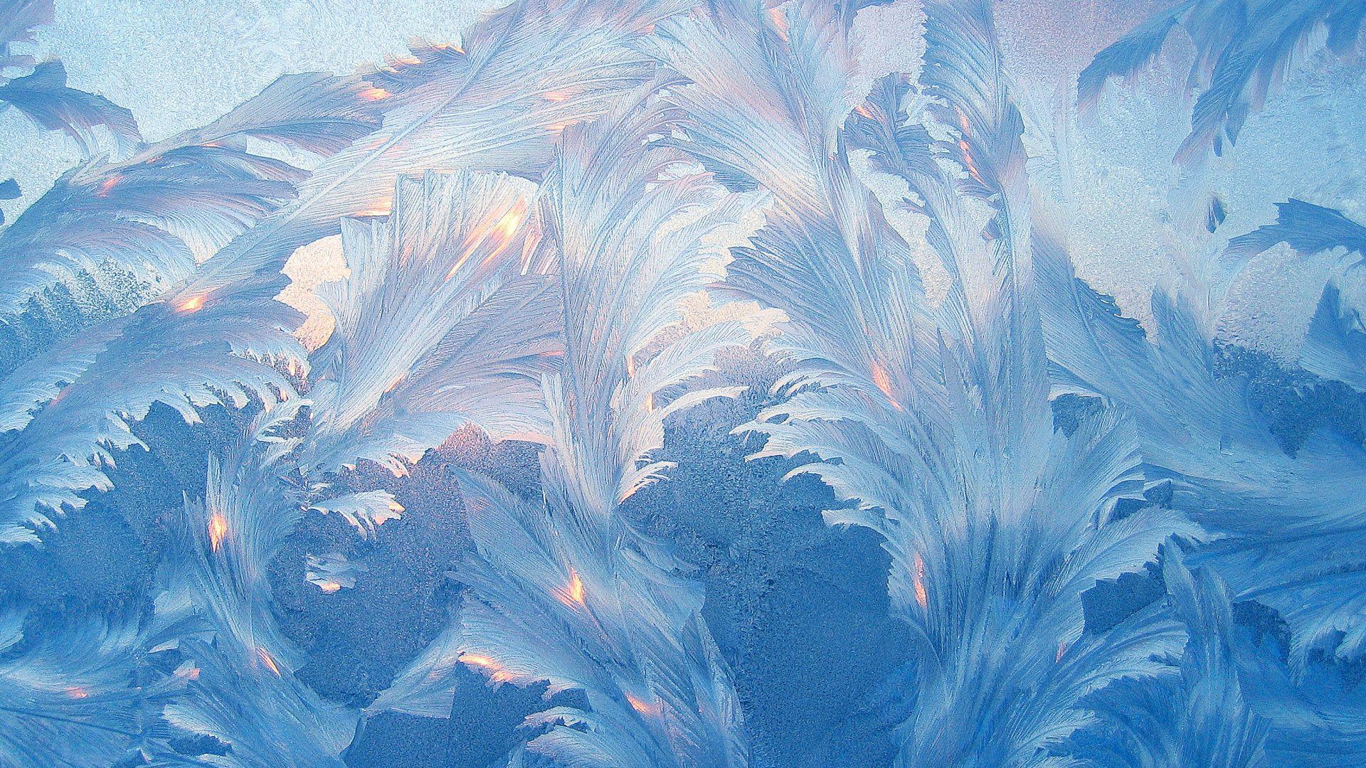 Winter Patterns On The Window desktop wallpaper