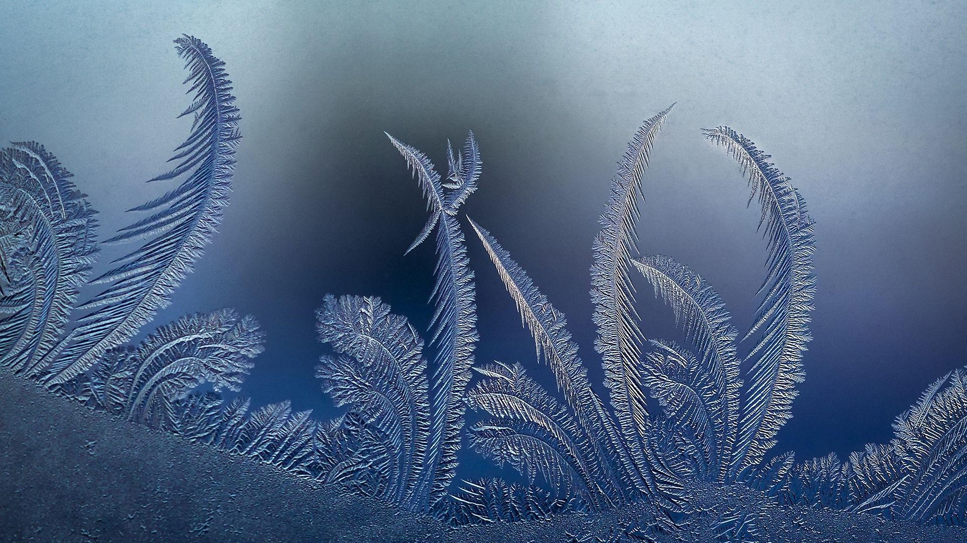 Winter Patterns On The Window HD Wallpaper