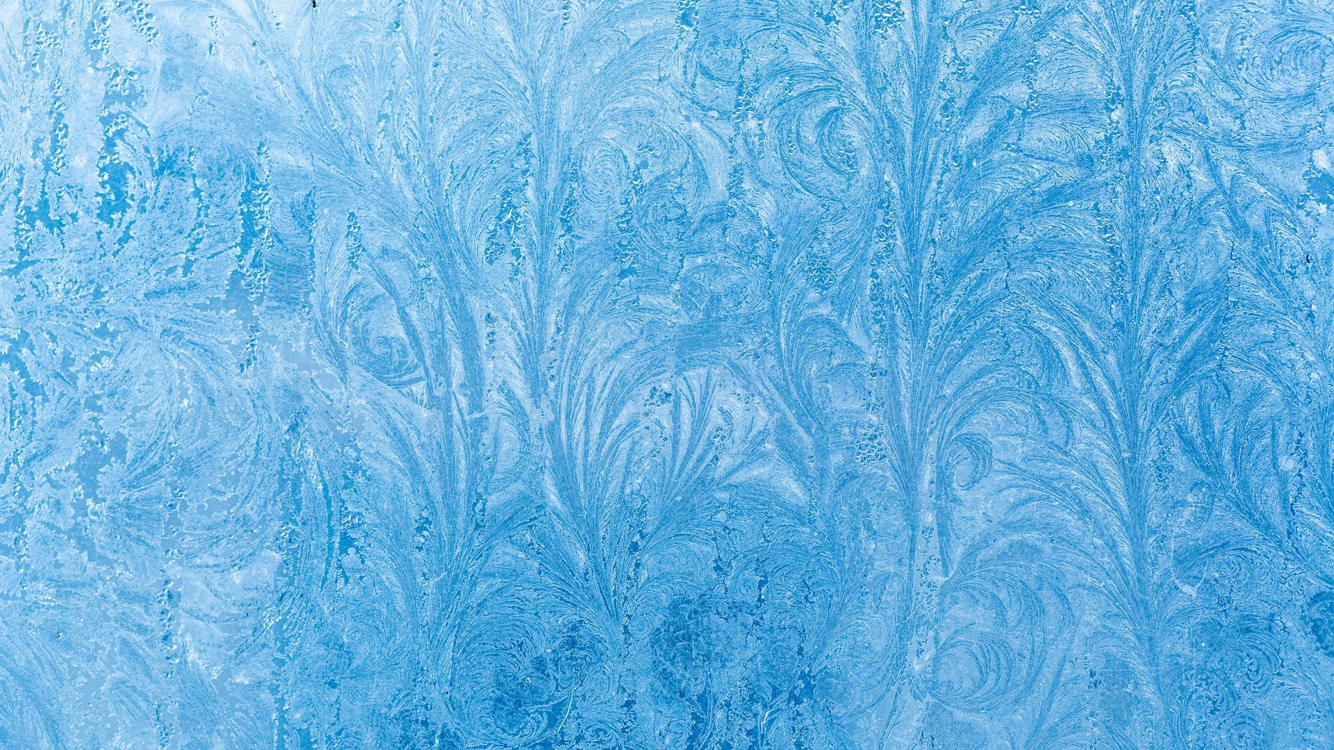 Winter Patterns On The Window HD Download