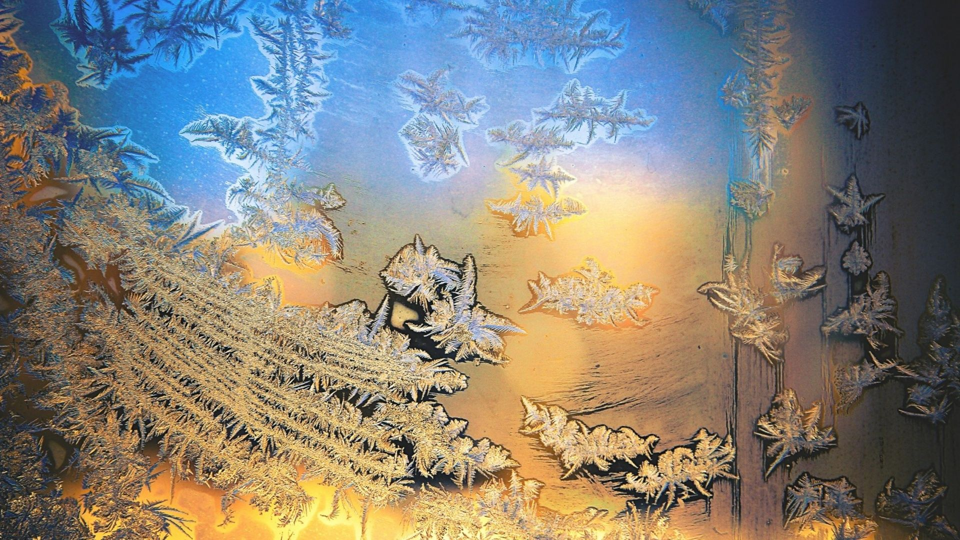 Winter Patterns On The Window wallpaper photo full hd