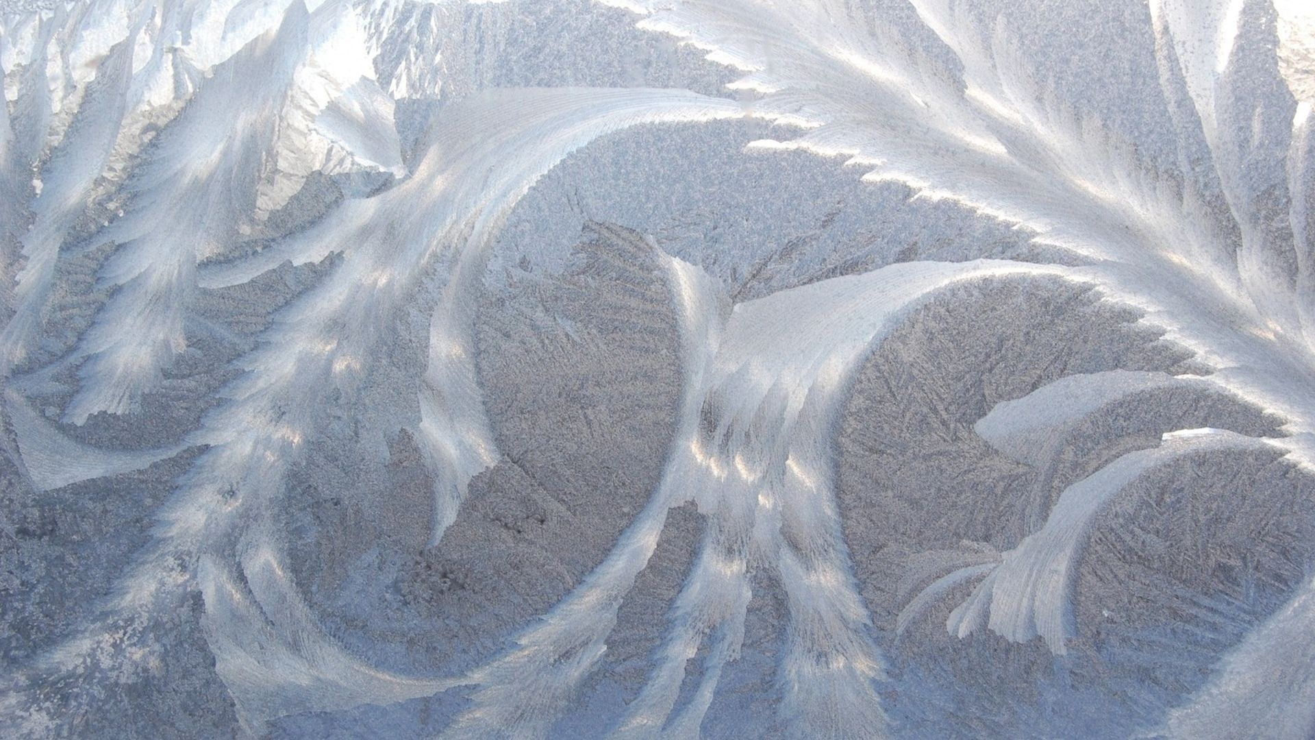 Winter Patterns On The Window Free Download Wallpaper