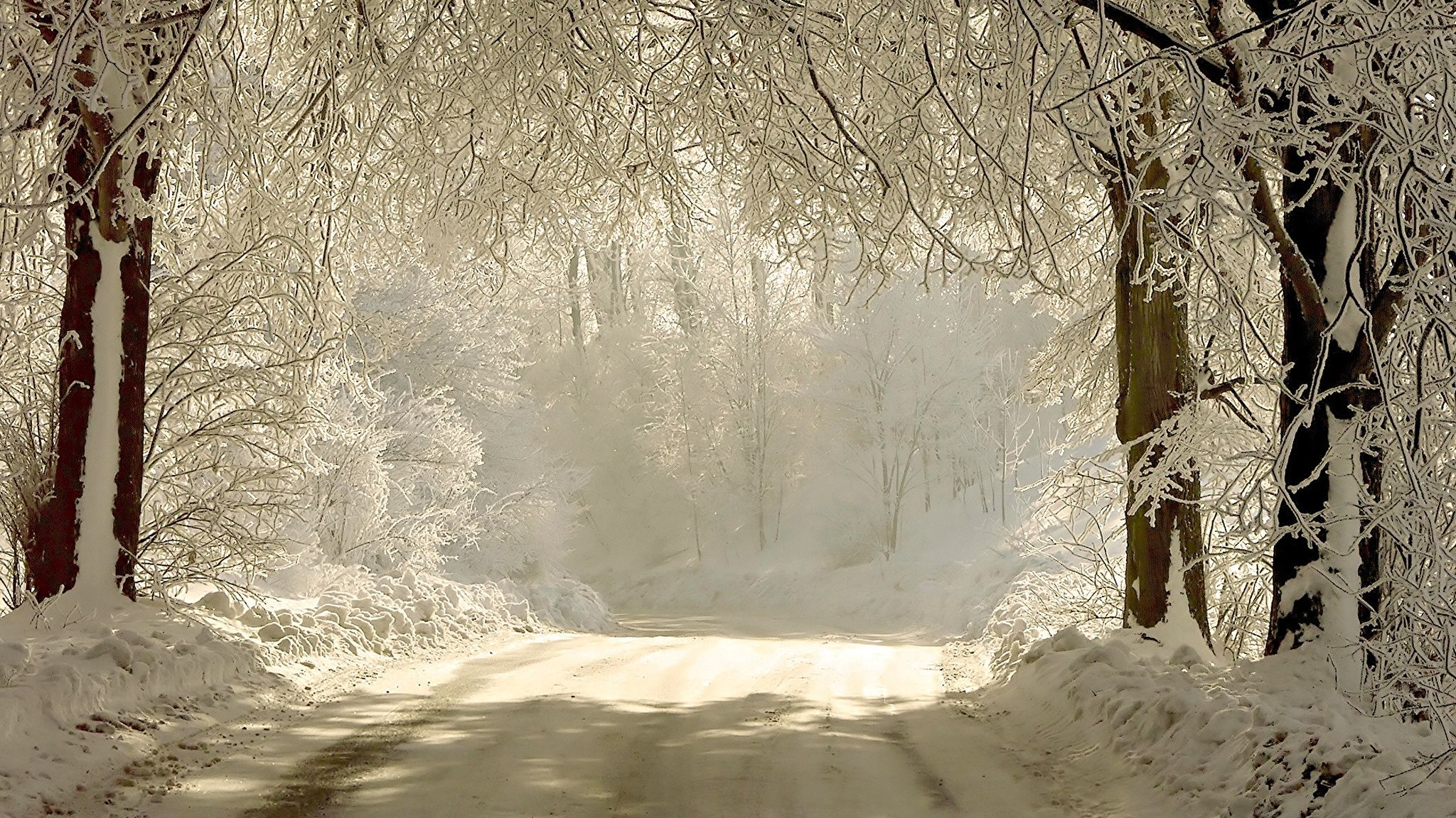 Winter Snow Scenes PC Wallpaper HD