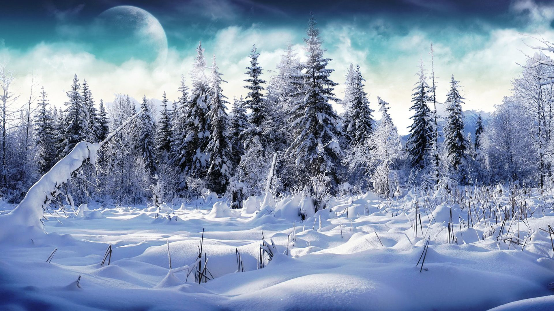 Winter Snow Scenes computer Wallpaper