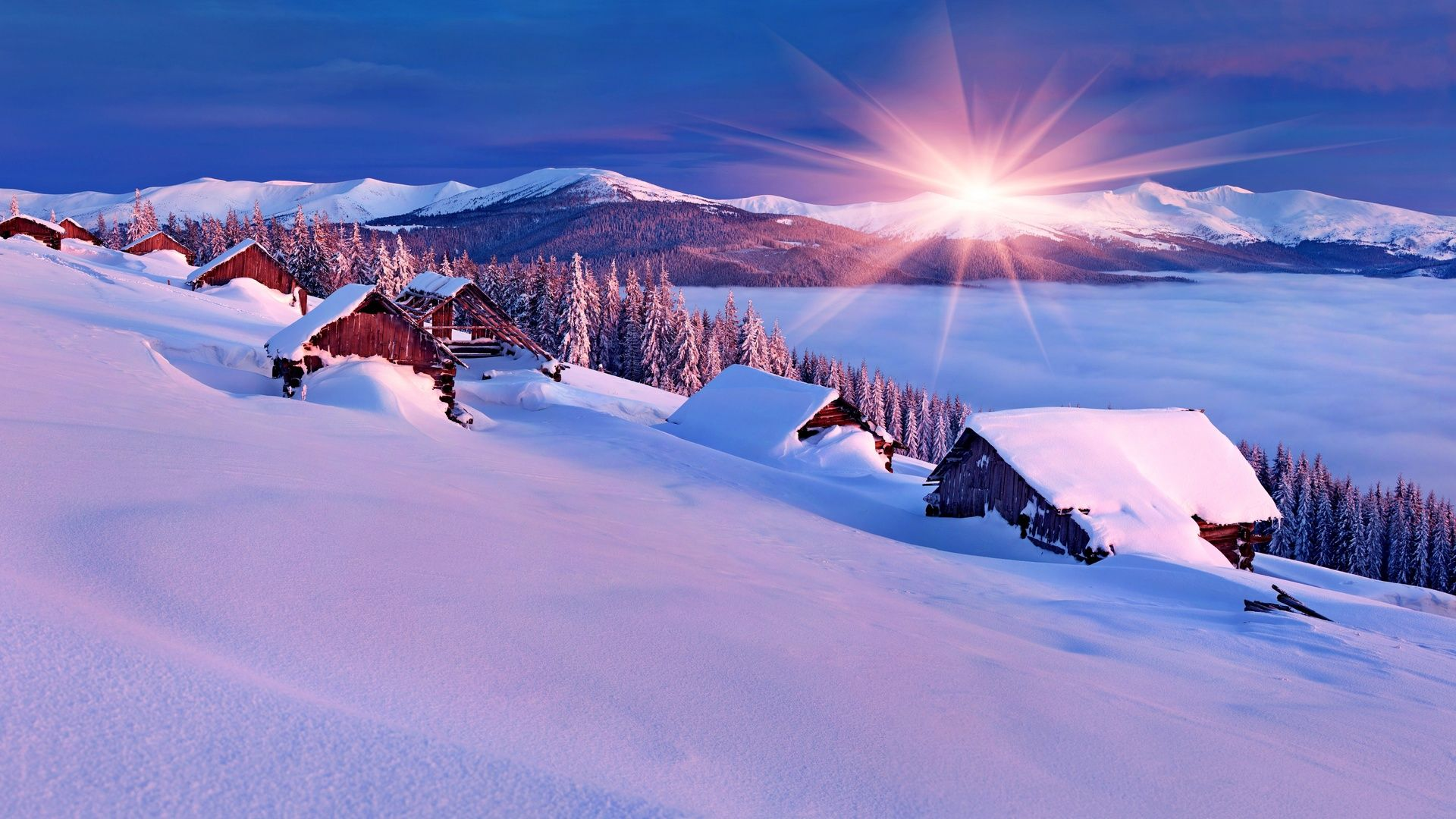 Winter Snow Scenes wallpaper and themes
