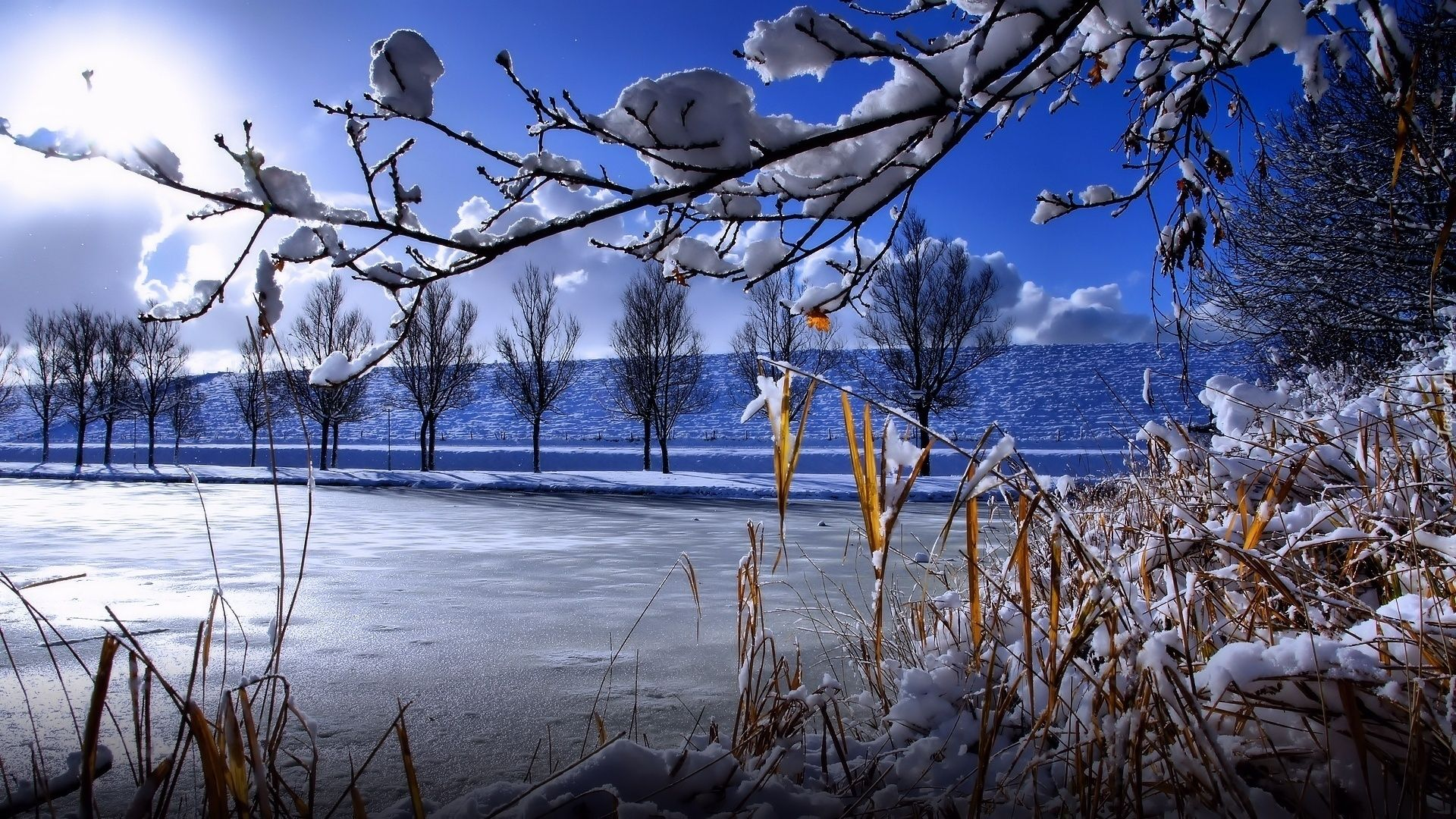 Winter Snow Scenes Wallpaper Theme