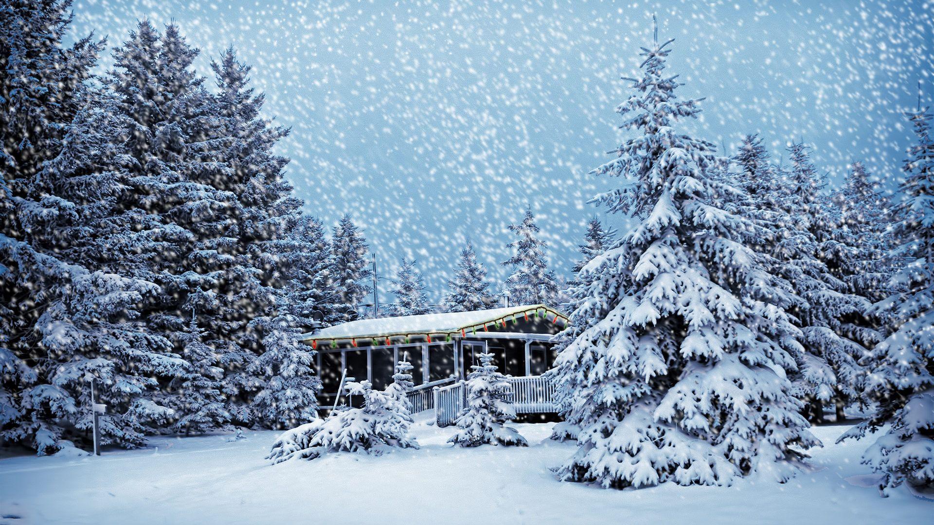 Winter Snow Scenes Pic