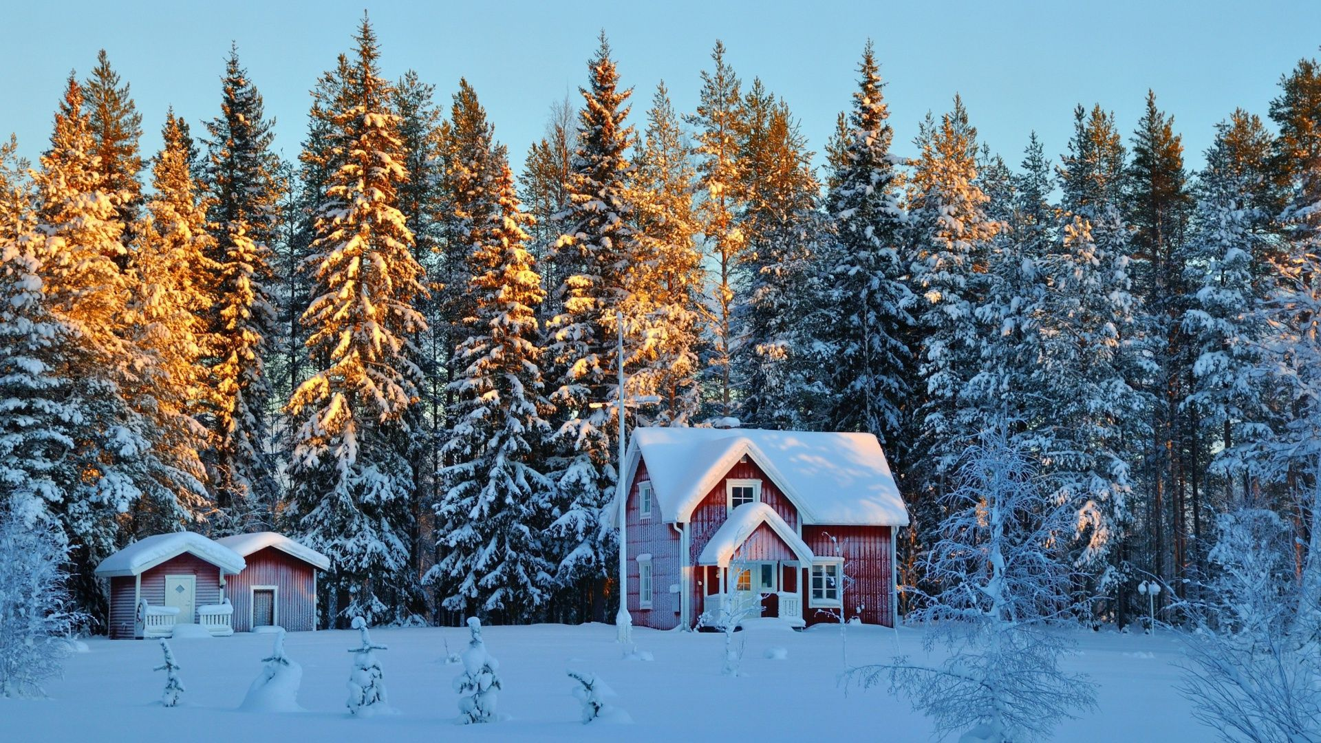 Winter Snow Scenes wallpaper image hd