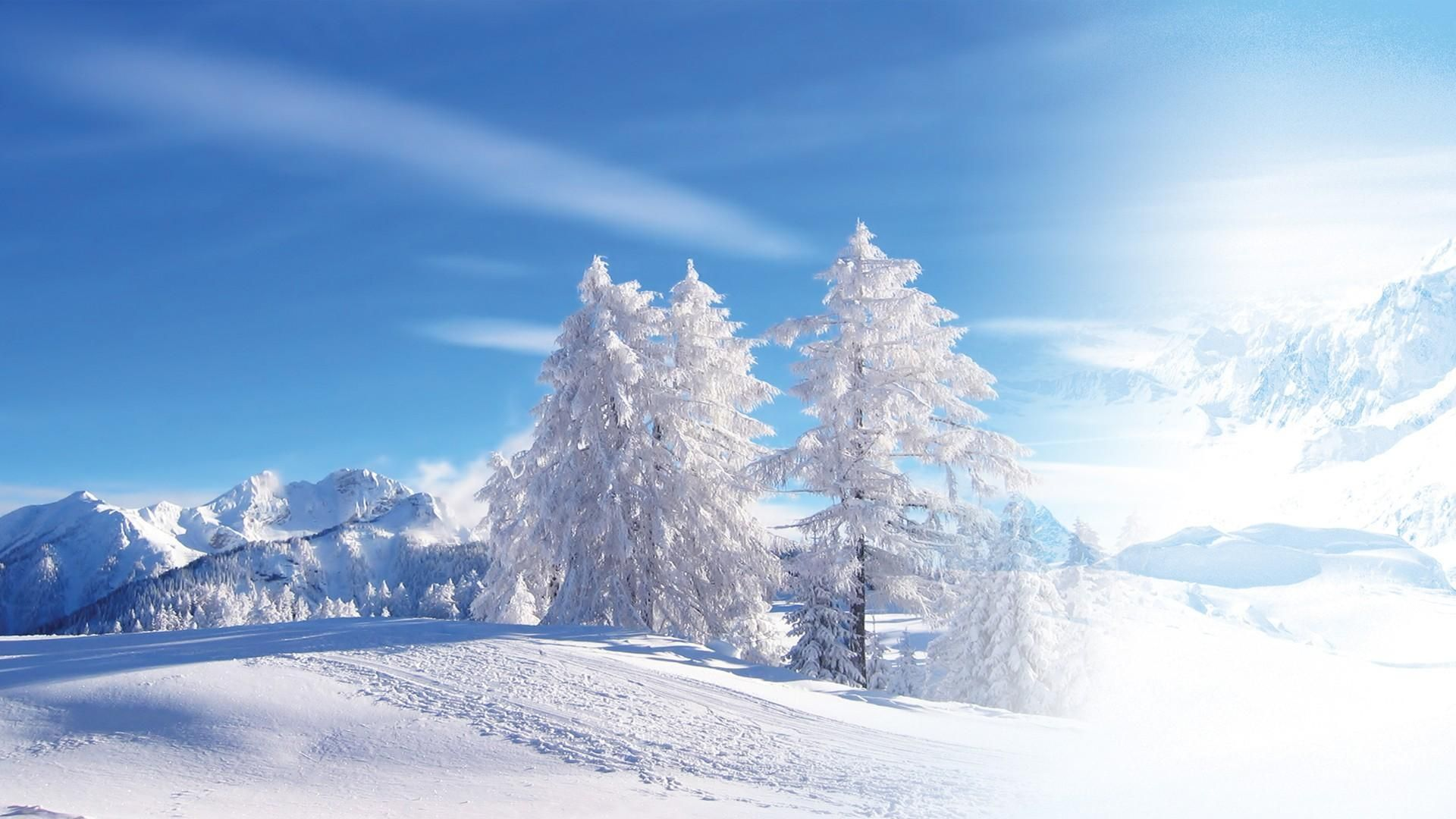 Winter Snow Scenes High Definition
