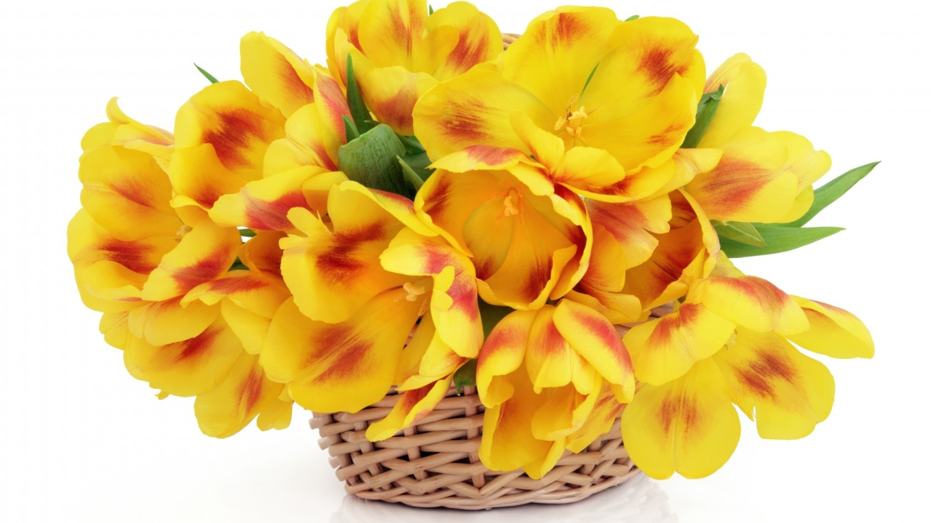Basket With Flowers download image