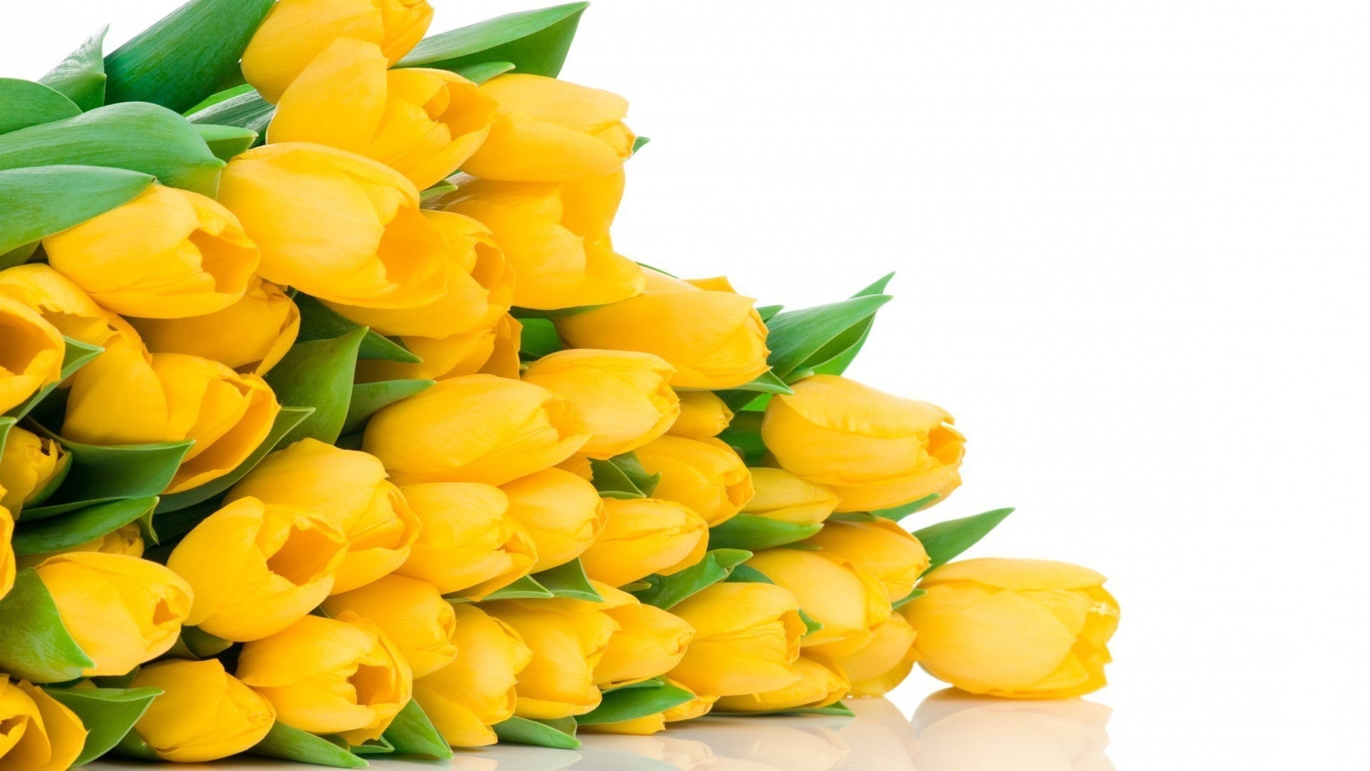 International Women's Day Flowers image theme