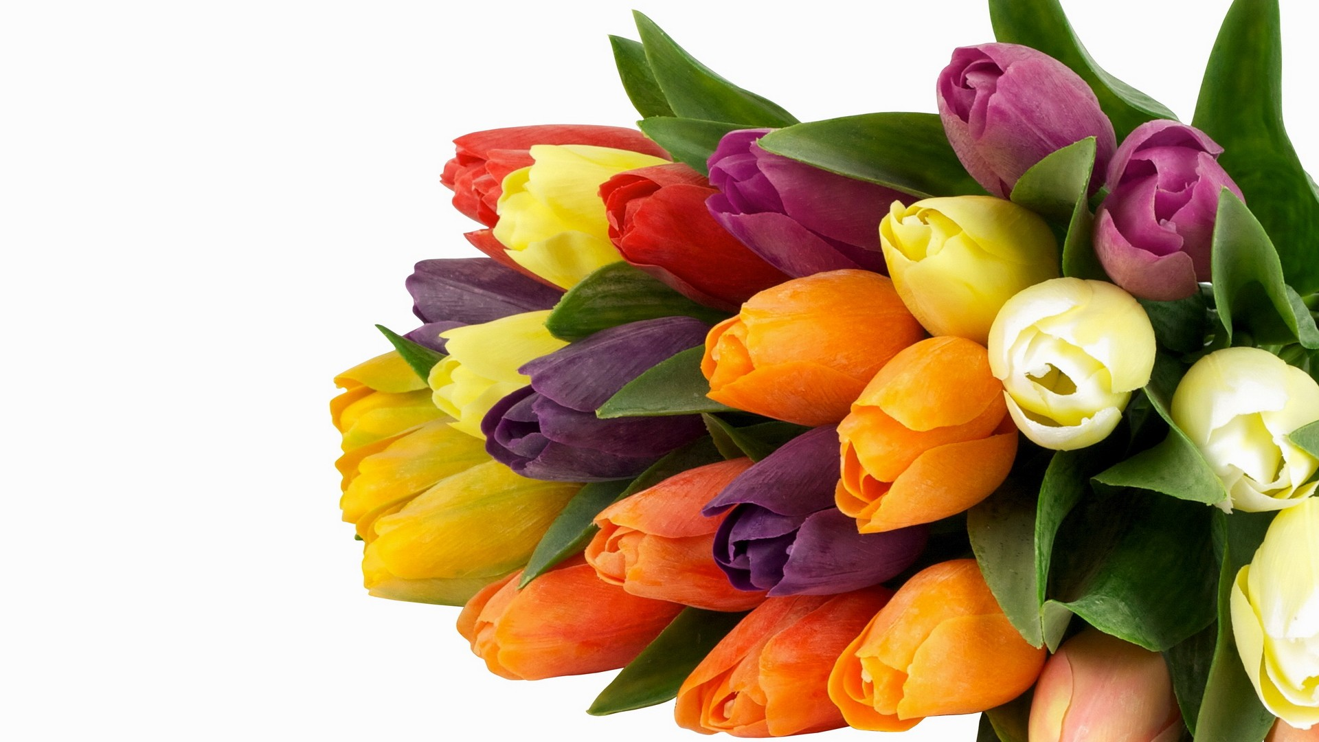 International Women's Day Flowers background image