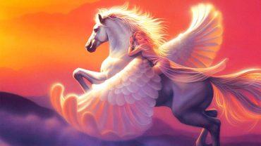 Pegasus Pic
