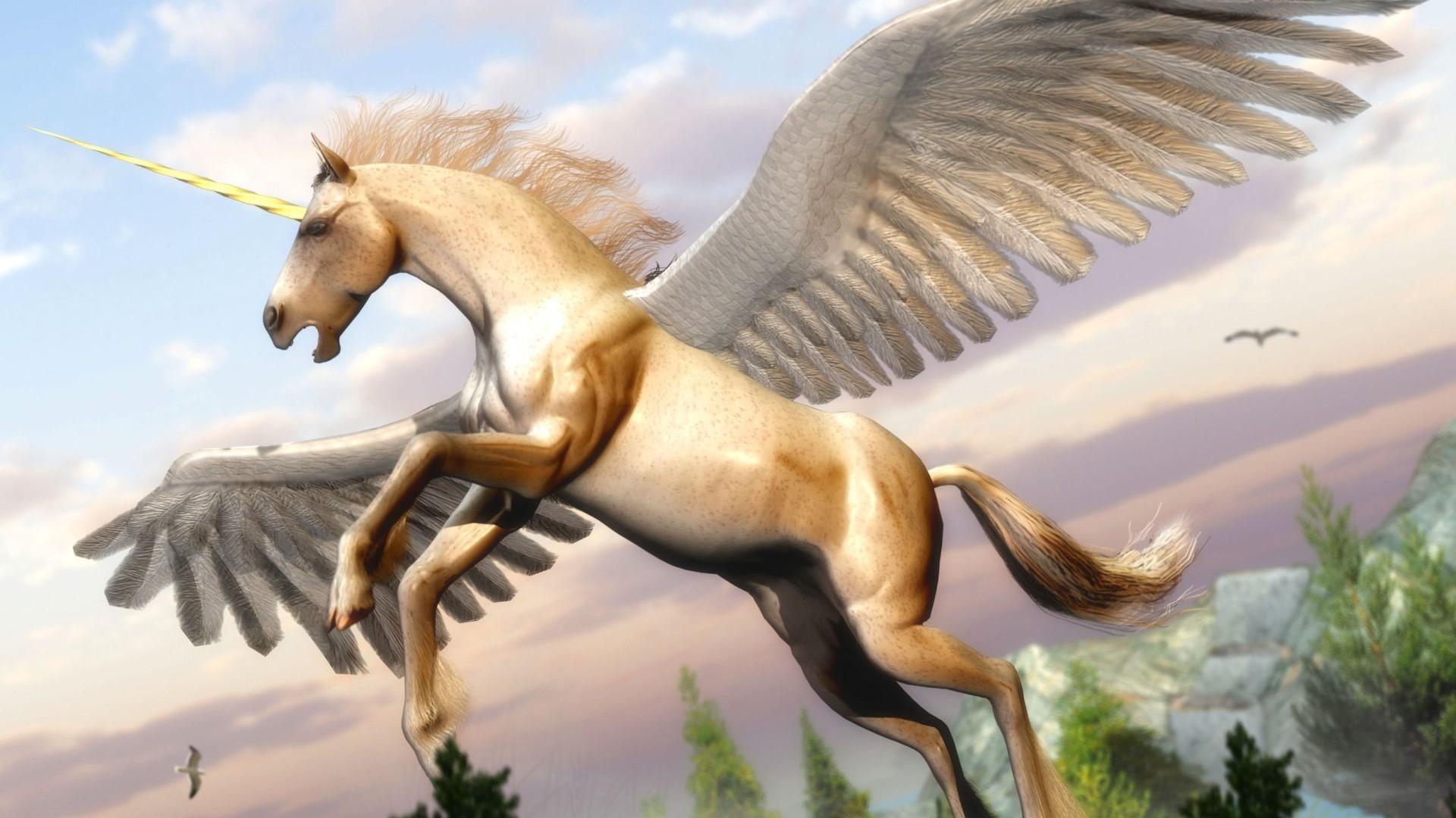 Pegasus wallpaper picture hd