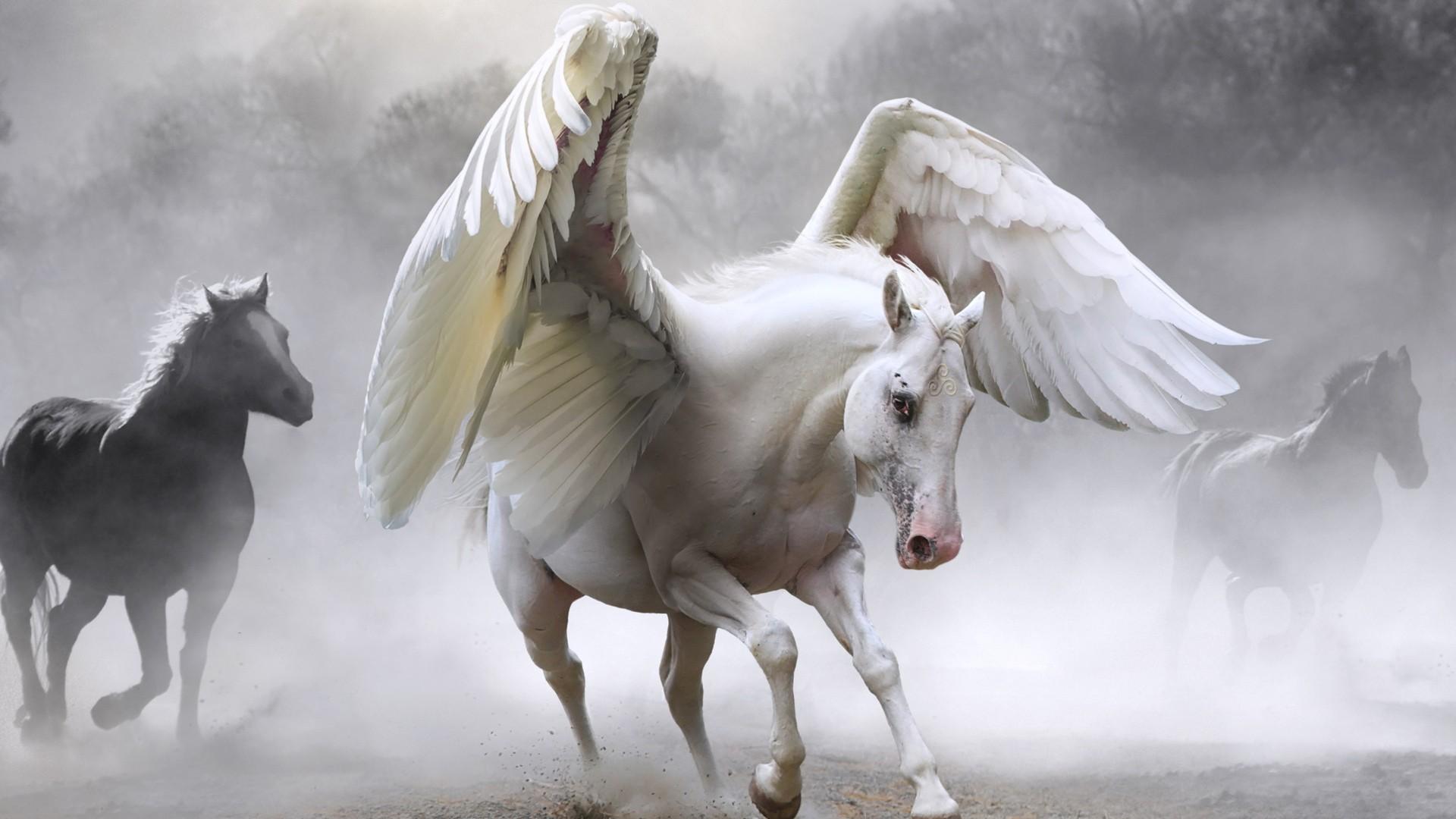 Pegasus HD Download