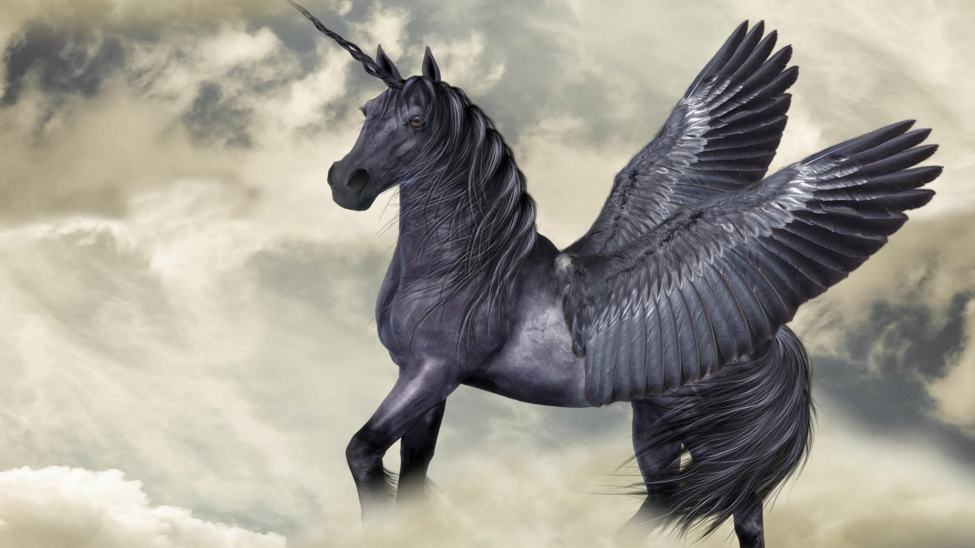 Pegasus Desktop Wallpaper