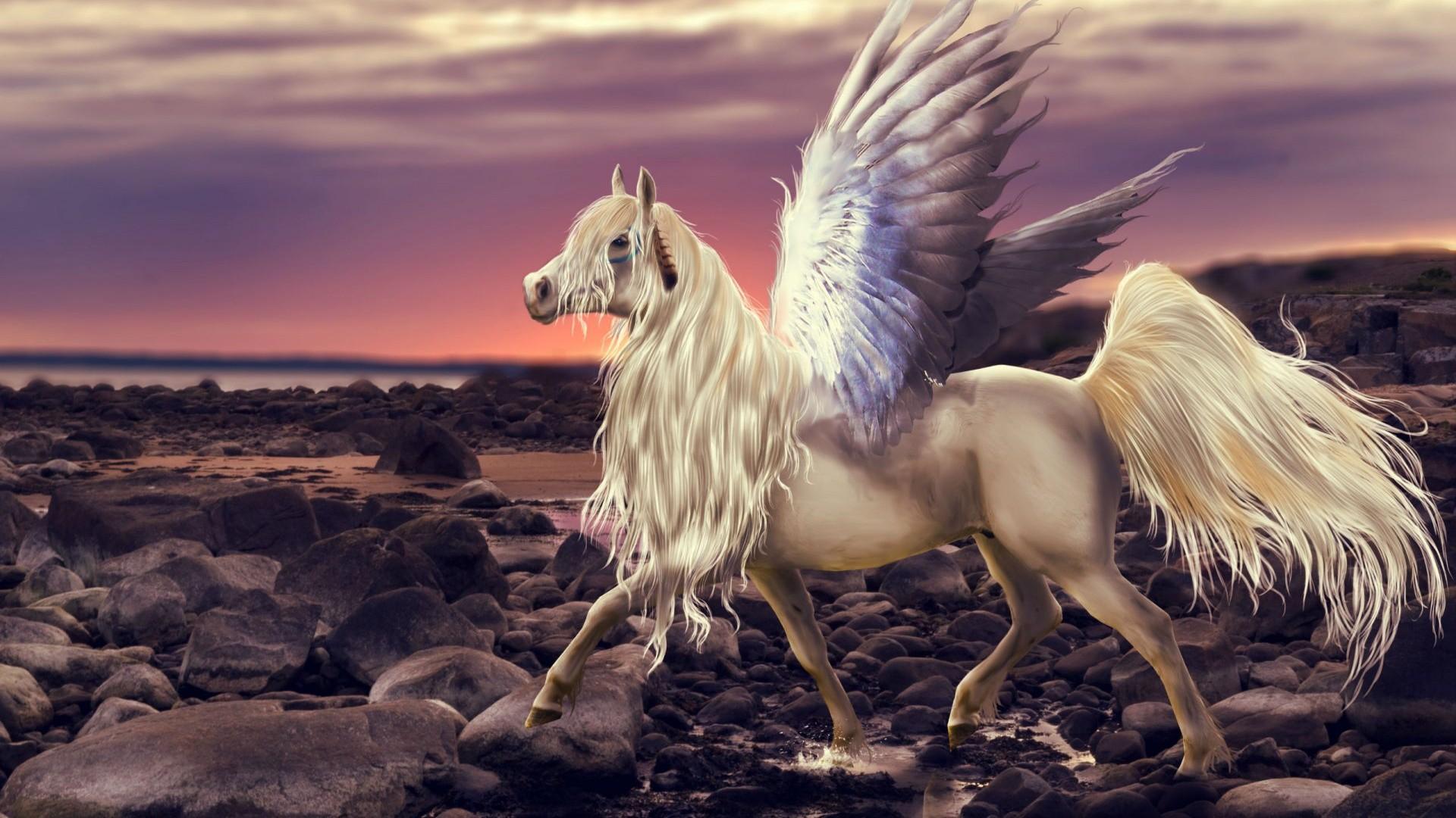 Pegasus wallpaper photo
