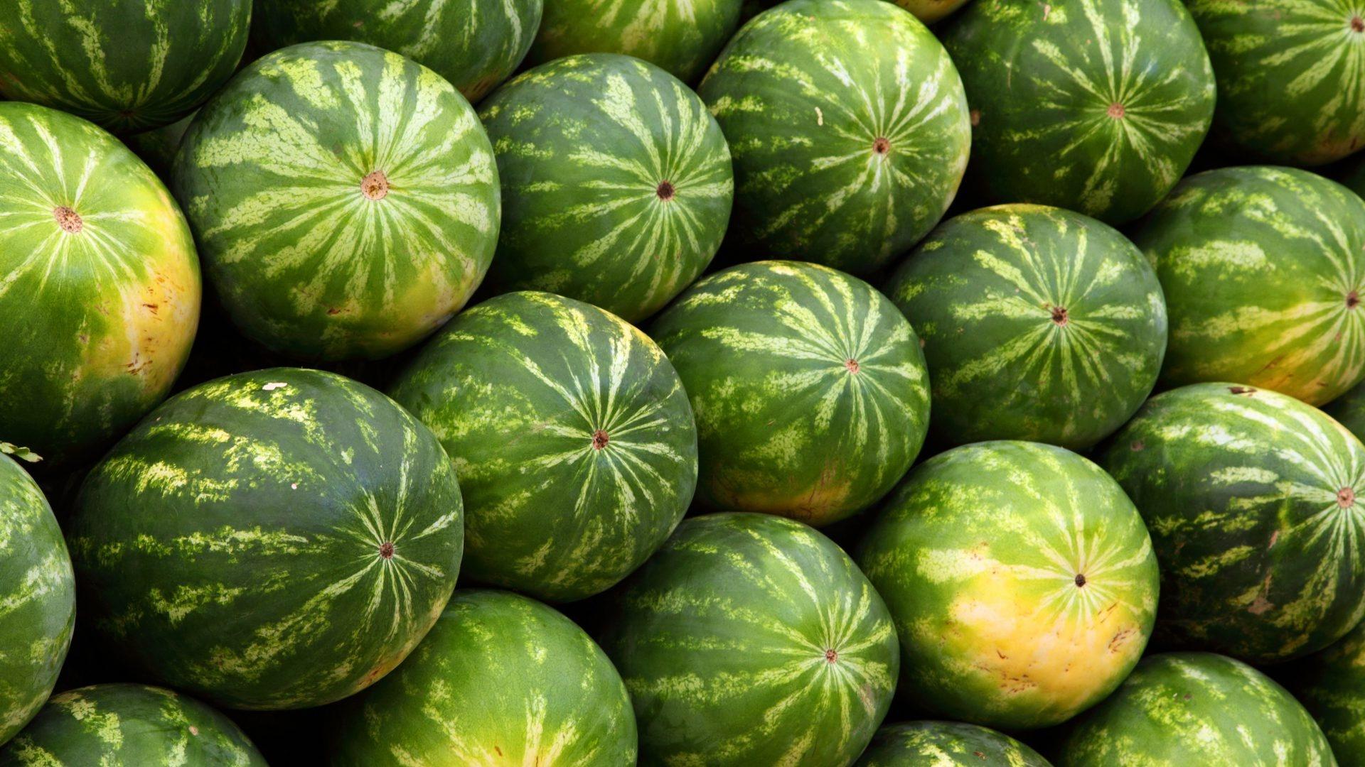 Watermelon background wallpaper